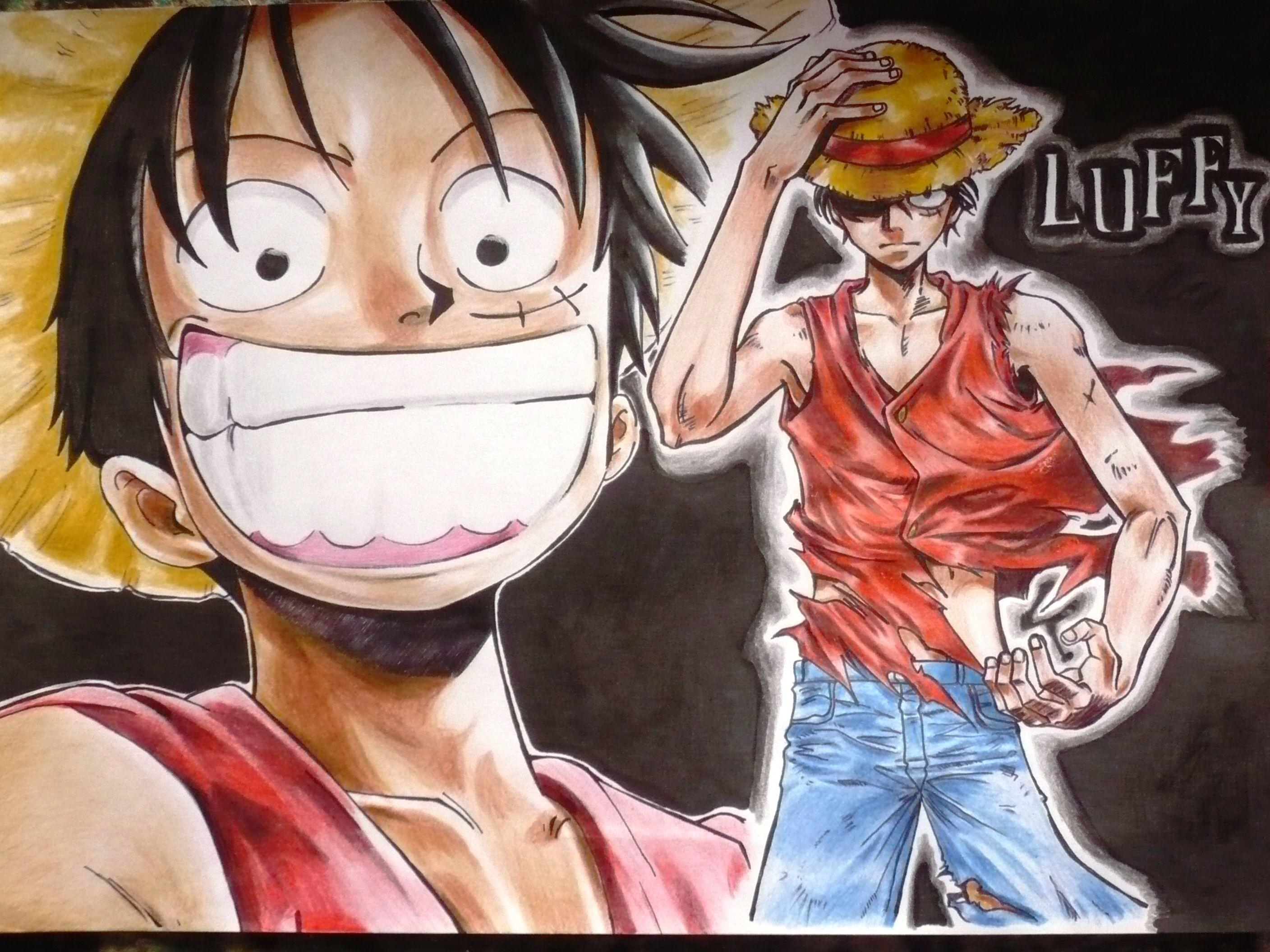 Monkey D Luffy Wallpapers : One Piece Crew Monkey D Luffy
