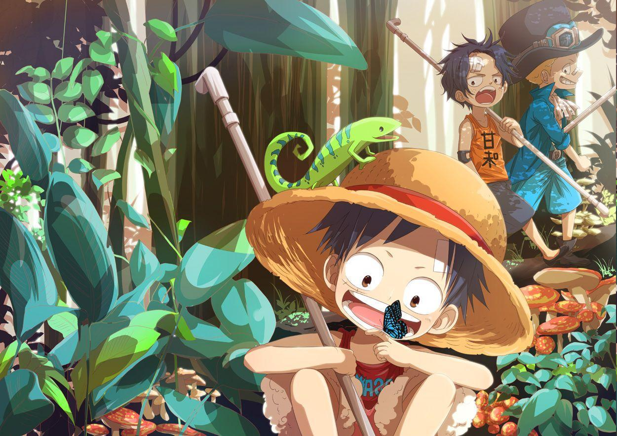 One Piece, Monkey D. Luffy, Sabo, Portgas D. Ace Wallpapers HD