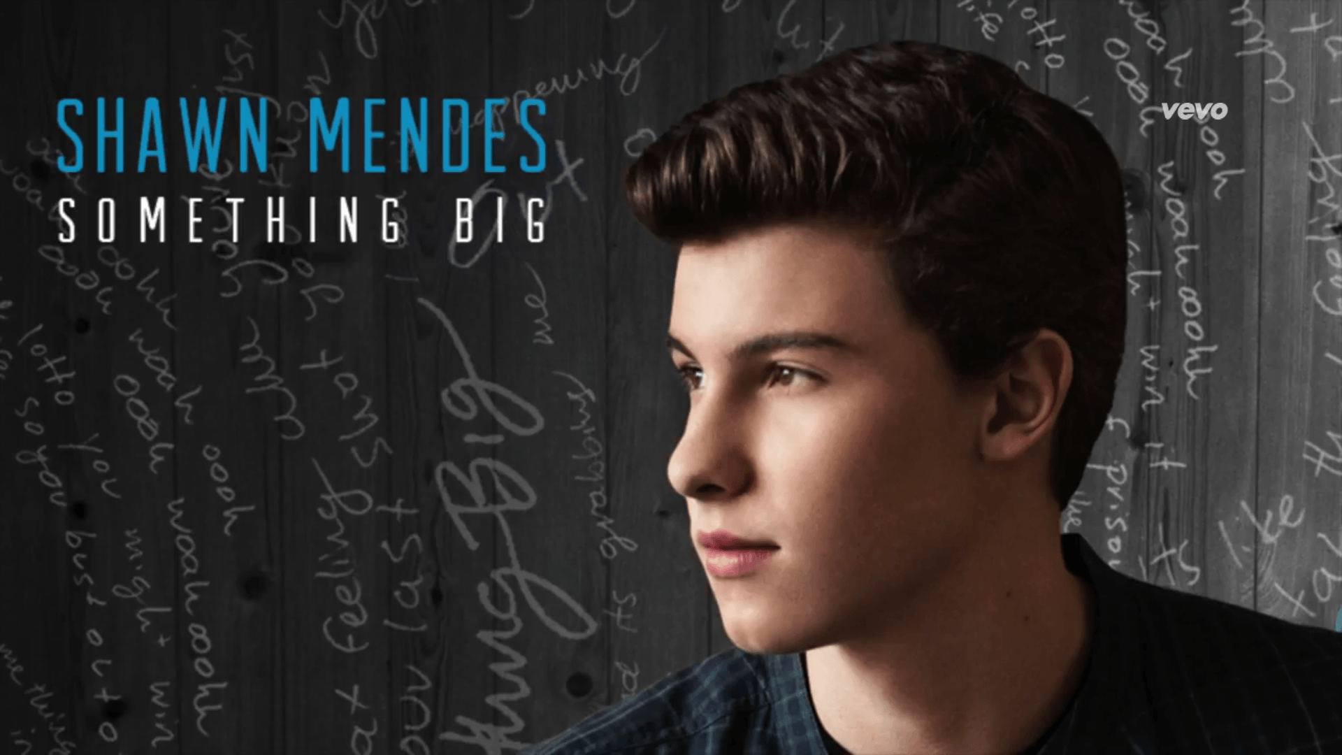 Shawn Mendes –