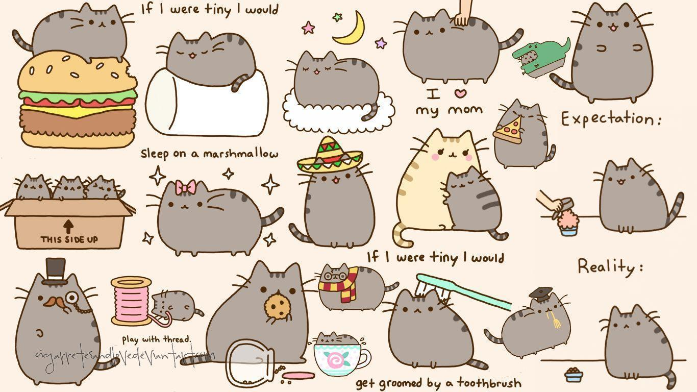 pusheen wallpapers wallpaper cave