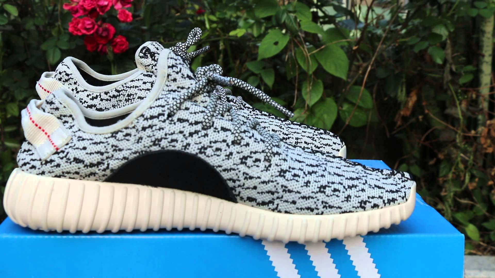 Adidas YEEZY BOOST 350 On Feet Review
