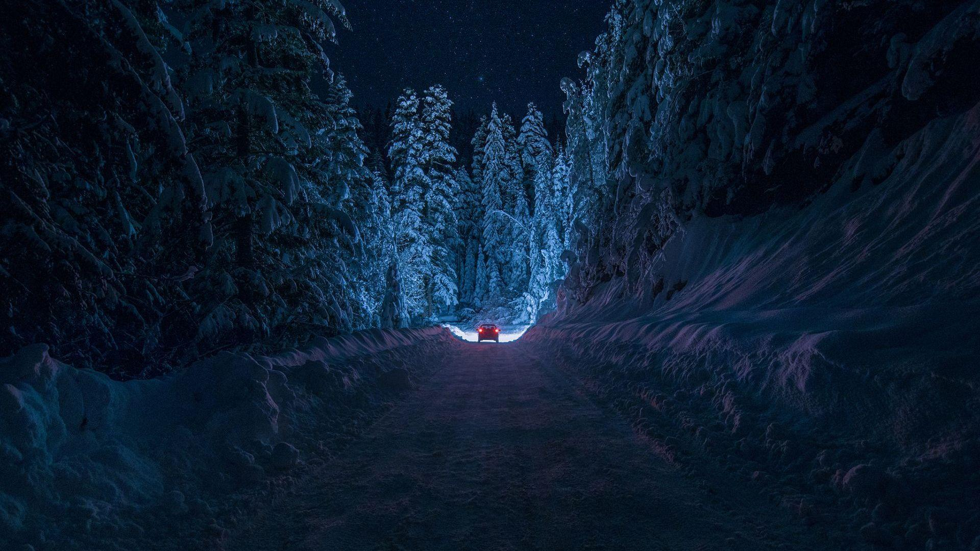 Driving Through The Snowy Forest HD Aesthetic Wallpapers Free