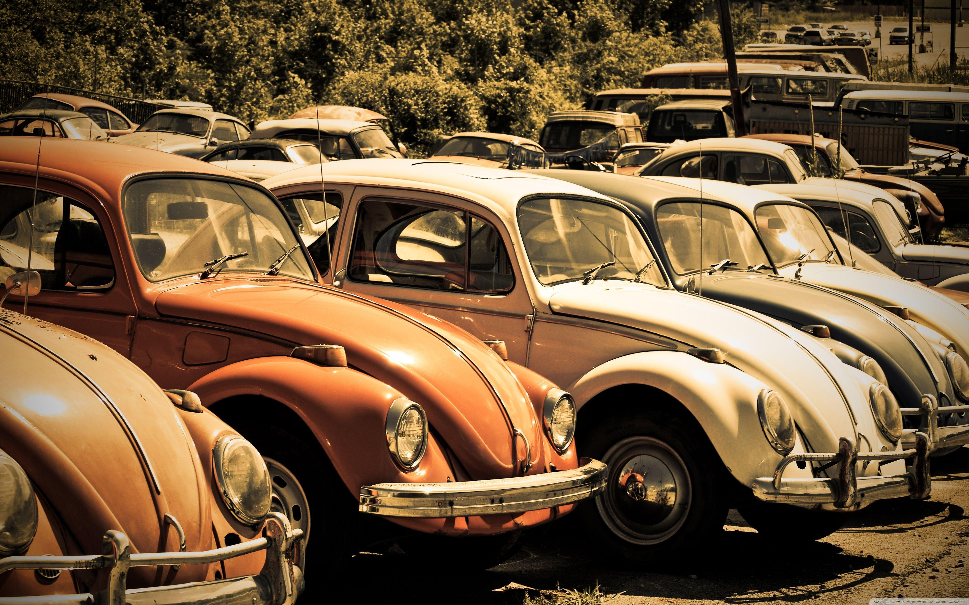Old Volkswagen Beetle Junkyard HD desktop wallpapers : High