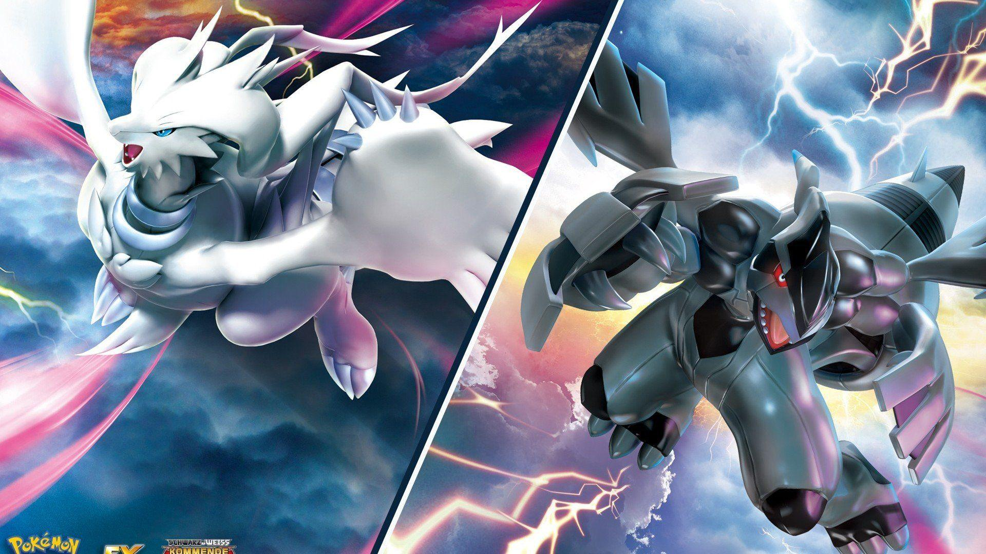 Pokemon Zekrom Vs Reshiram Wallpapers