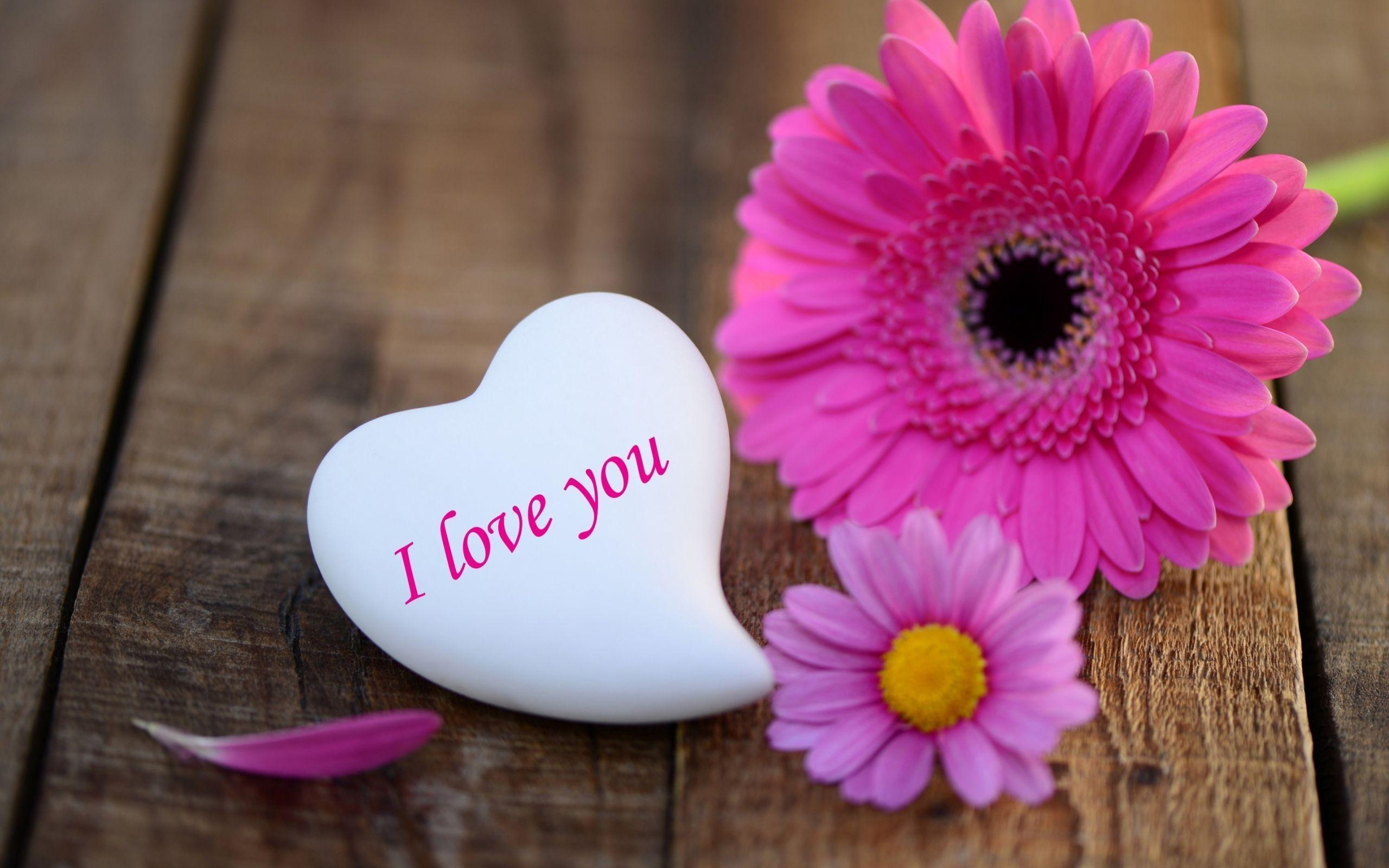 I Love You Wallpapers, Pictures, Image