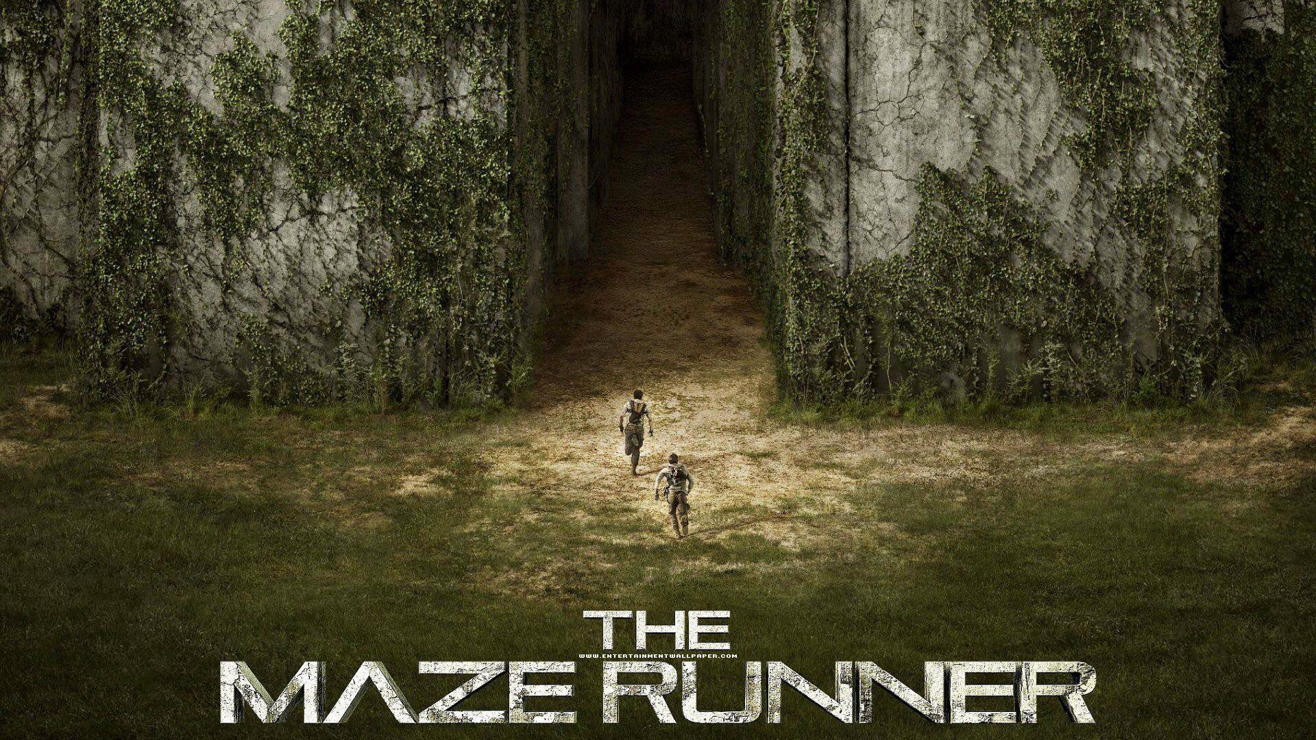 Maze Runner Wallpapers Wallpaper Cave