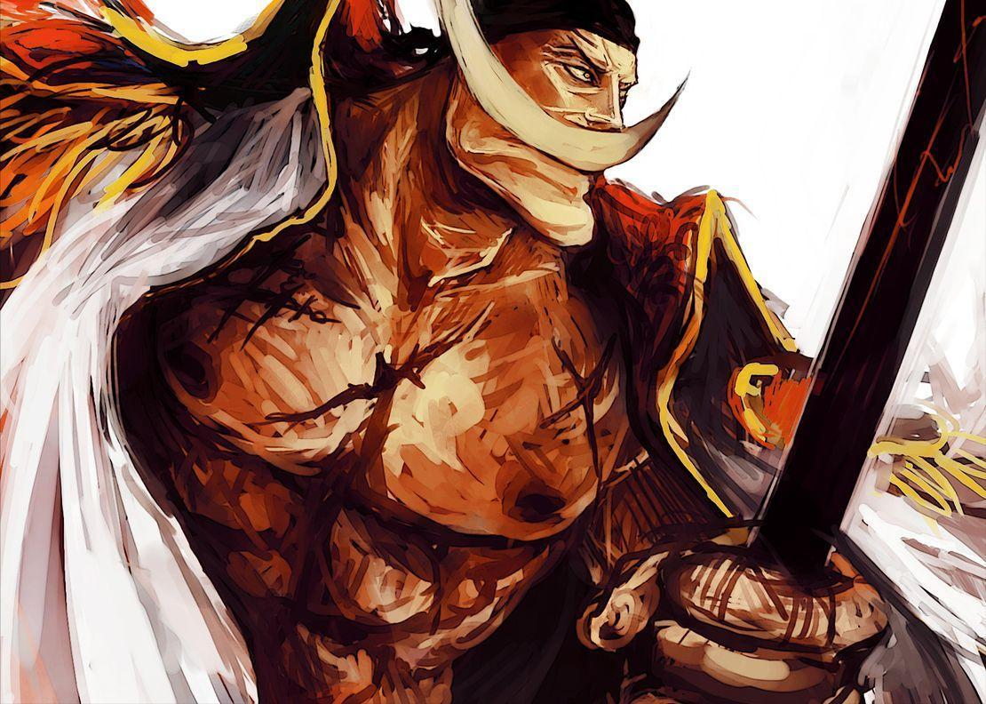 1000+ images about Whitebeard on Pinterest