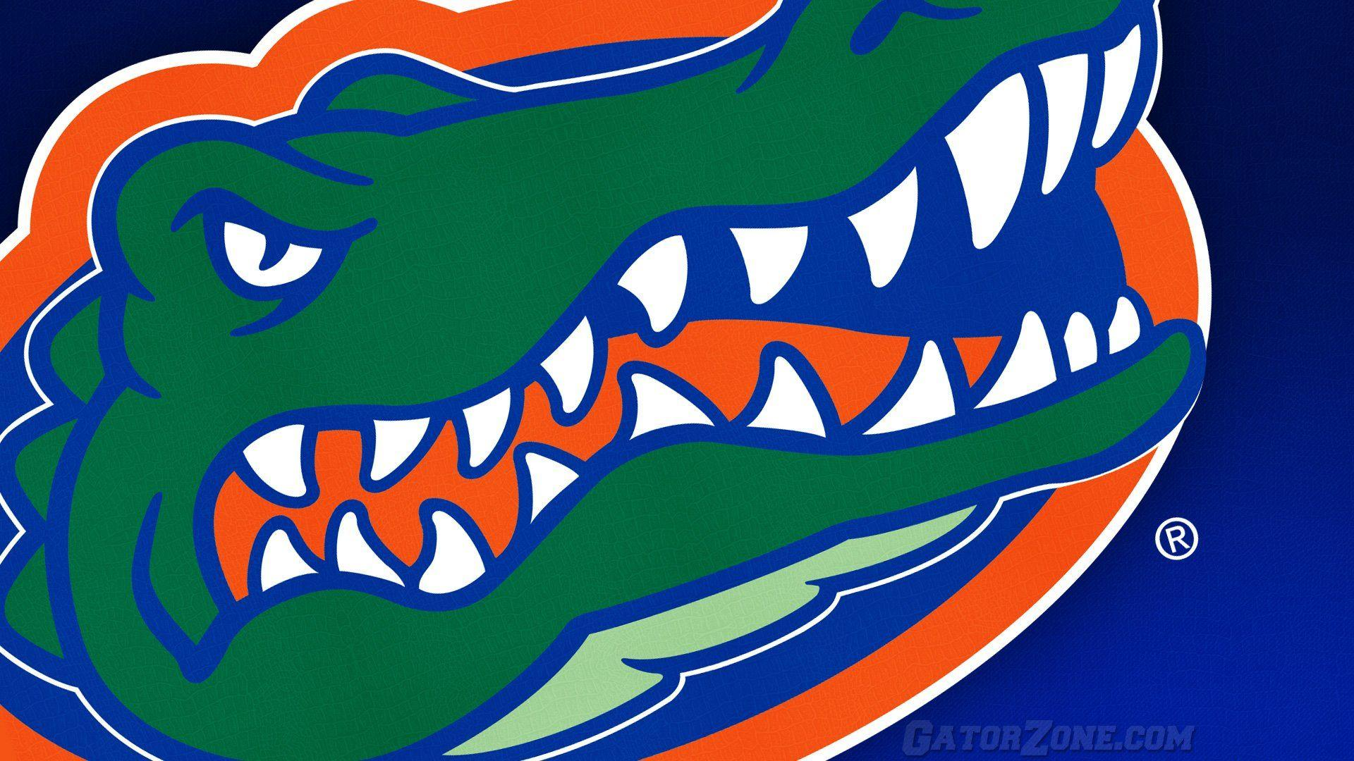florida gators wallpaper – wallpapermonkey.com