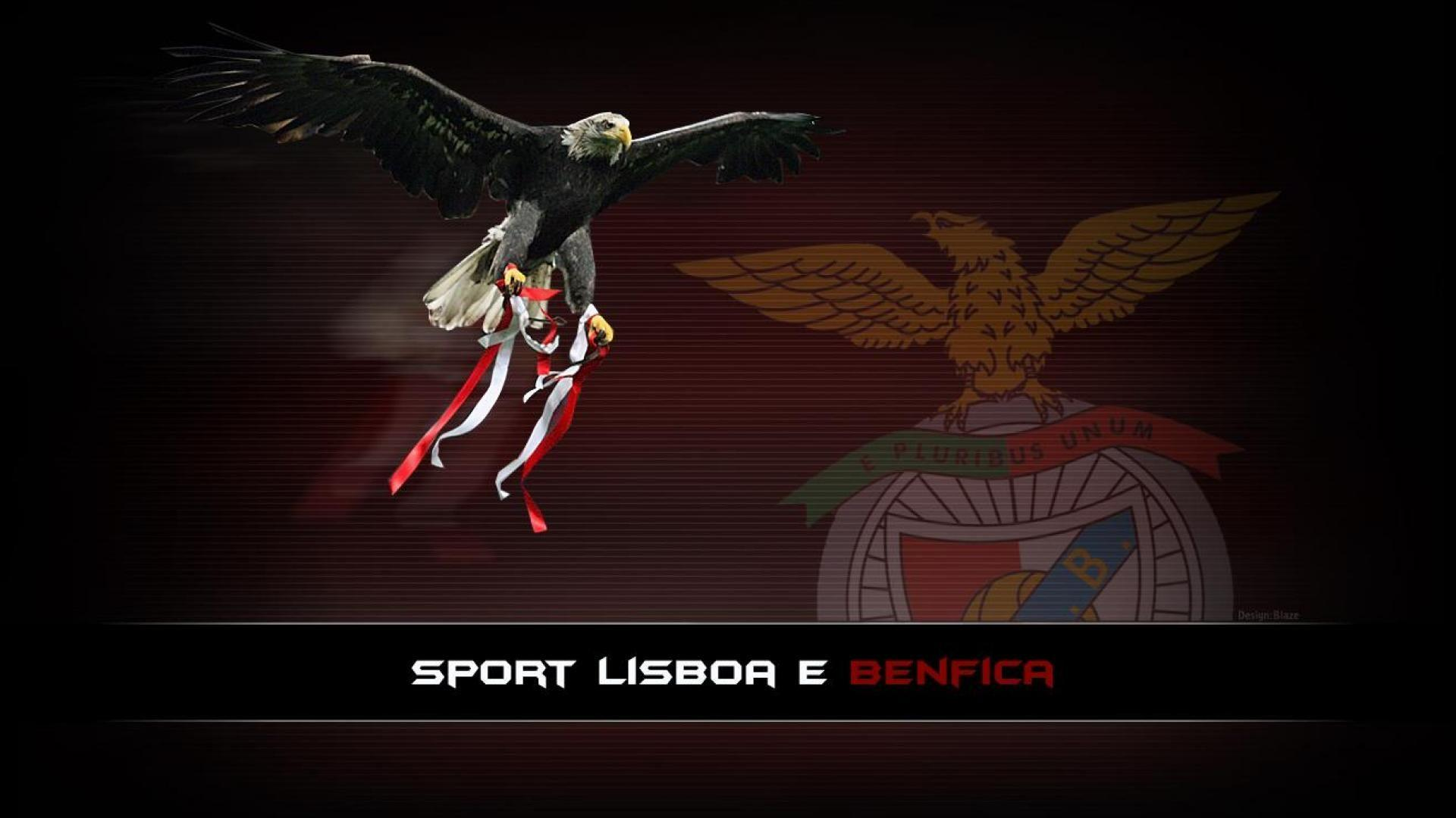 Collection of Benfica Wallpapers on Spyder Wallpapers