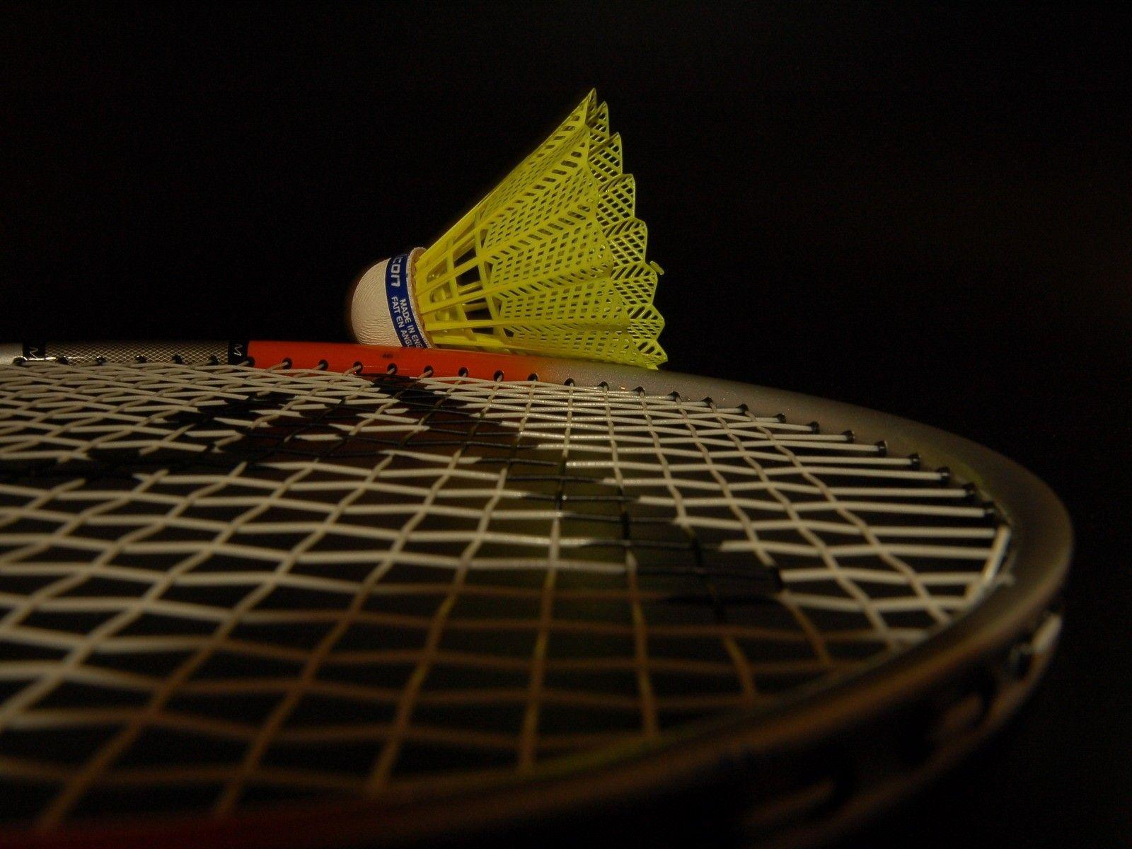 Playing Badminton wallpaper – wallpaper free download