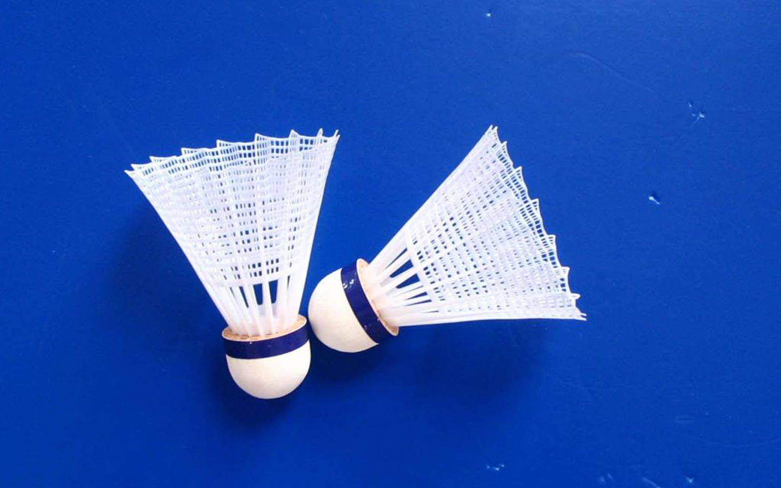 badminton Computer Wallpapers, Desktop Backgrounds | 1600x1000 ...