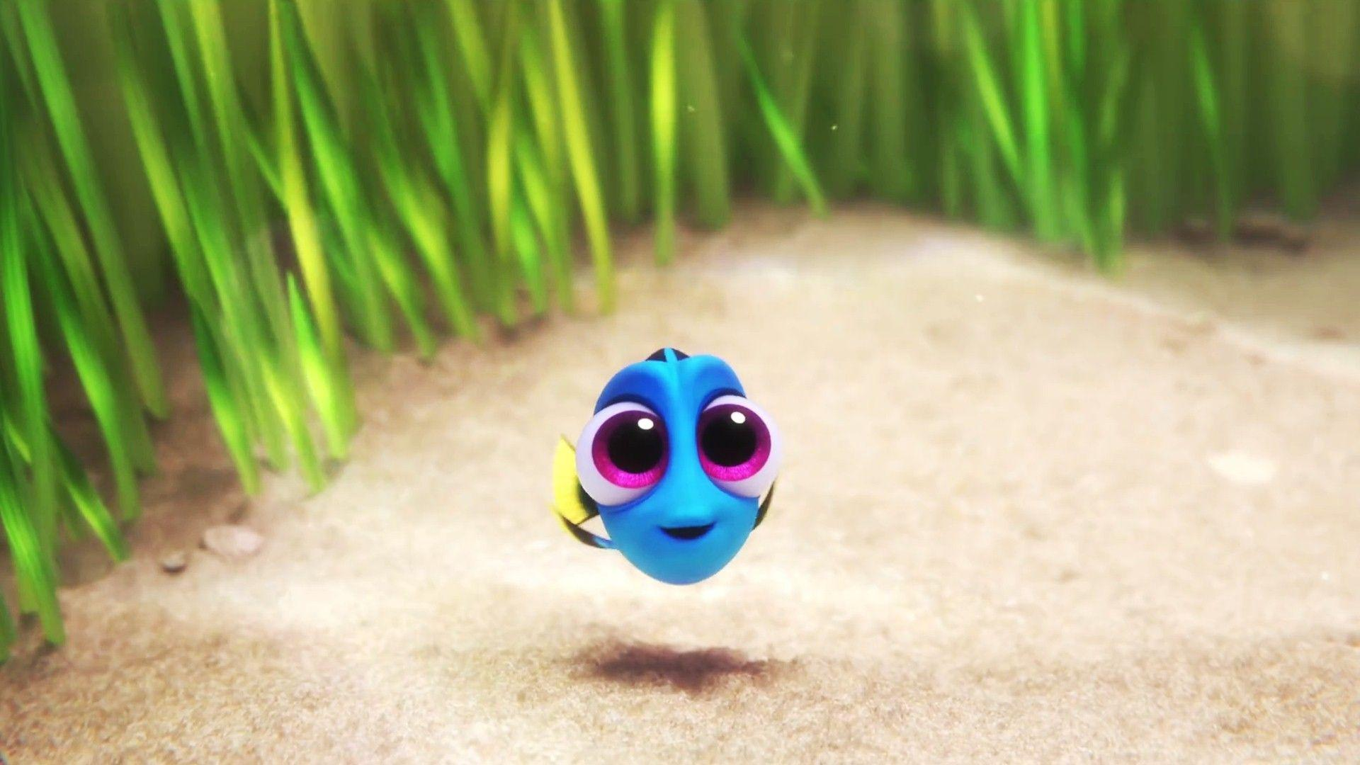 Finding Dory Wallpapers HD Backgrounds, Image, Pics, Photos Free