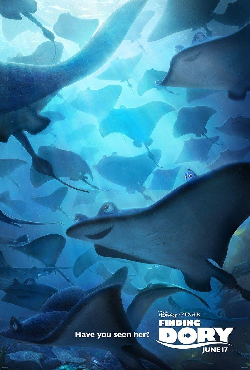 Finding Dory wallpapers HD 2016 in Cartoons