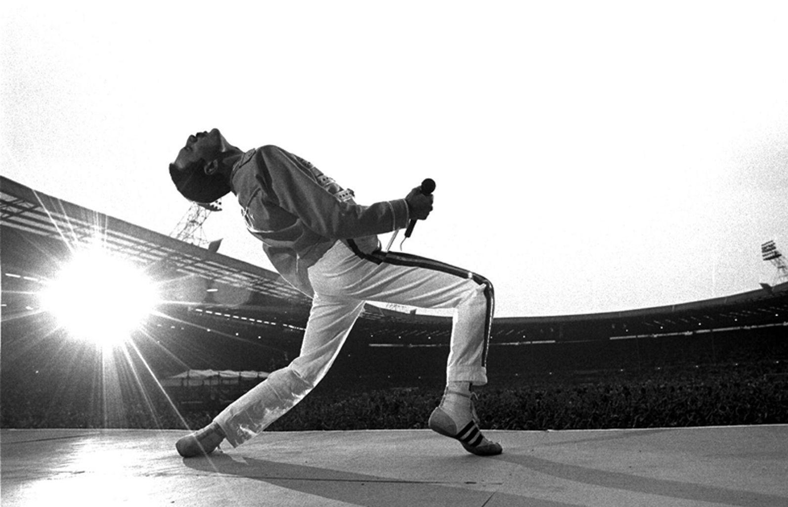 Freddie Mercury Wallpapers Wallpaper Cave