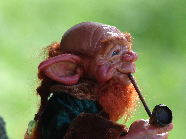 1000+ images about Leprechauns on Pinterest | Creative, St pattys ...