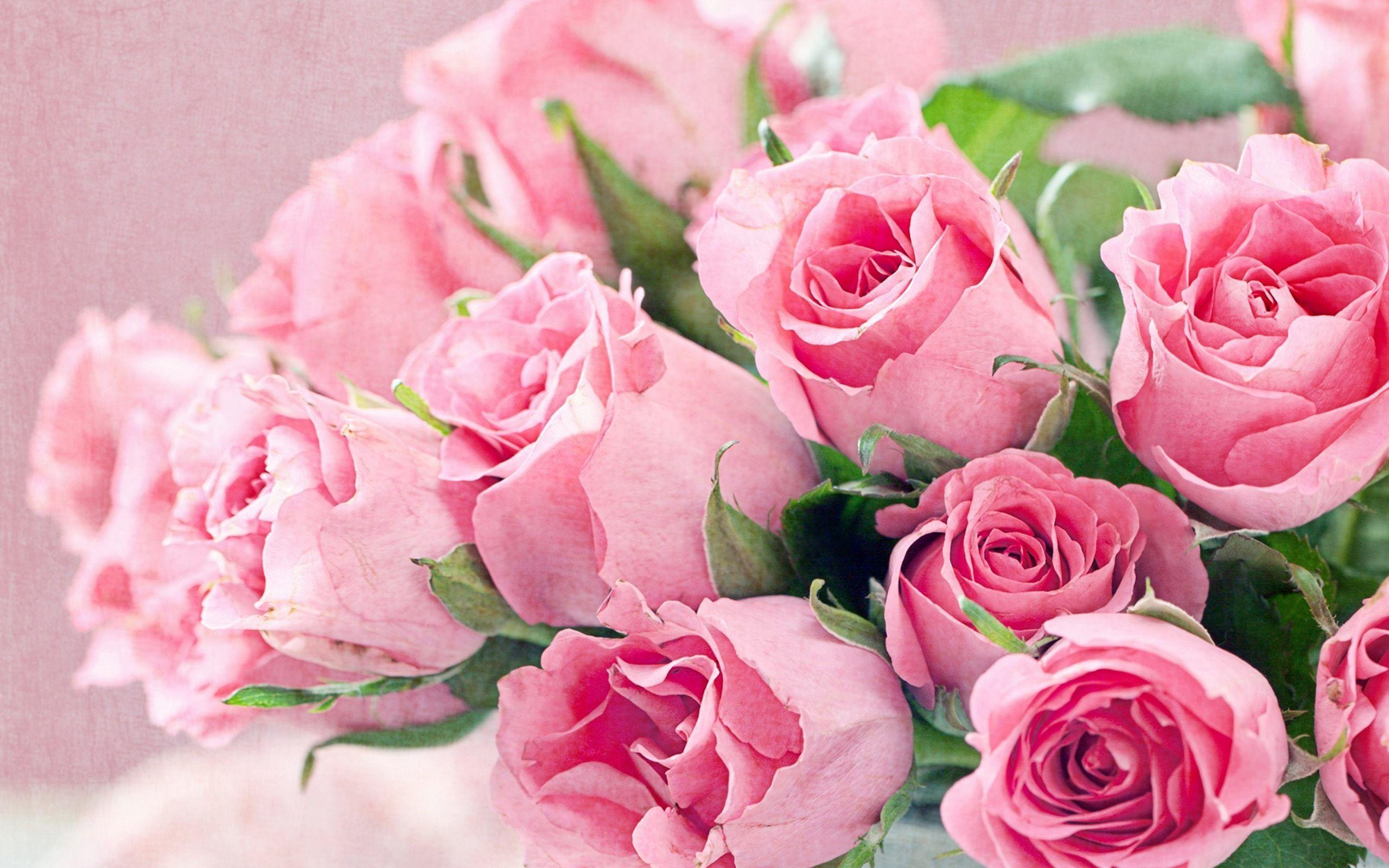 Pink Flowers Wallpapers - Wallpaper Cave