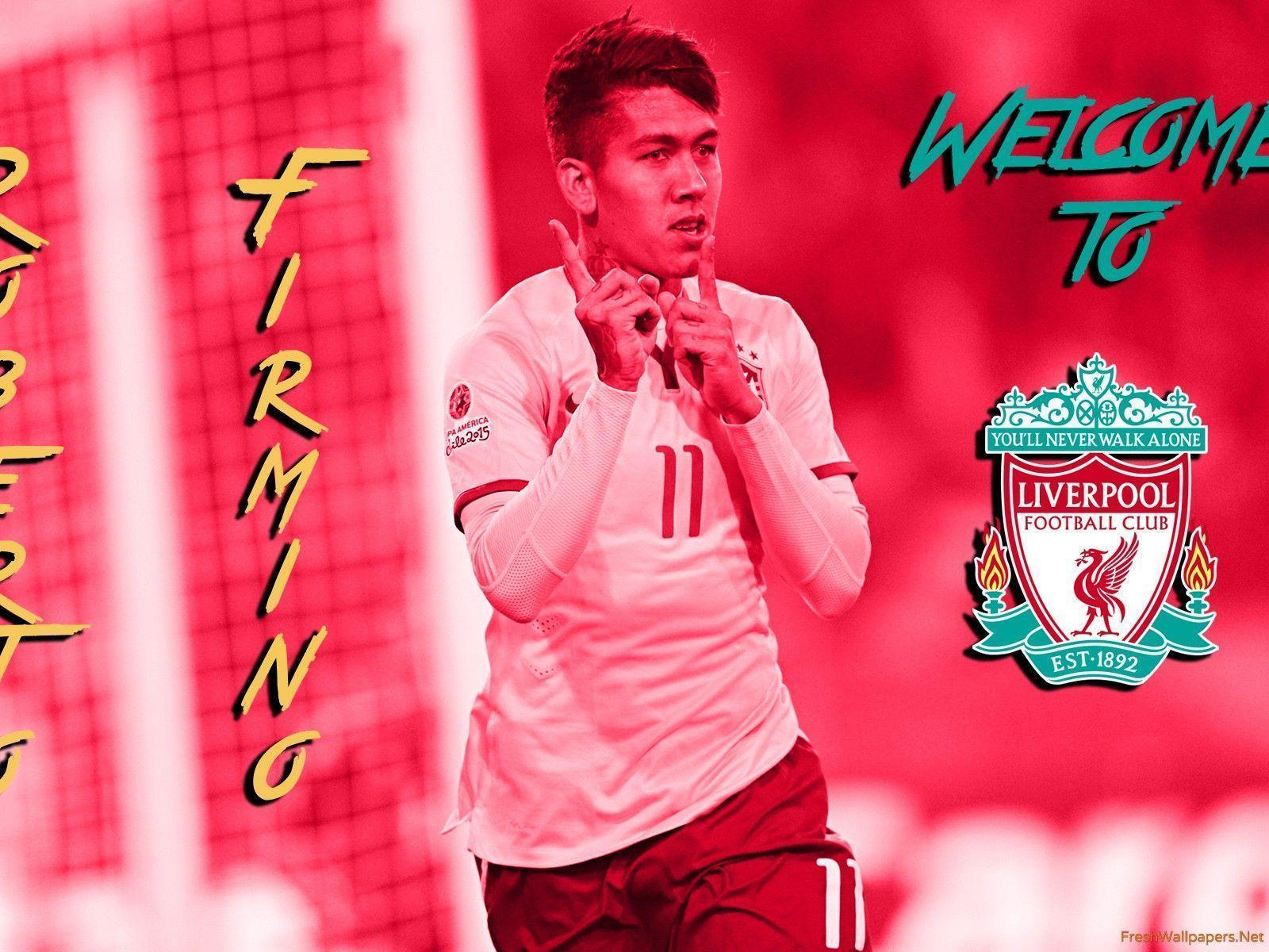 Roberto Firmino 2015 Welcome To Liverpool FC wallpapers