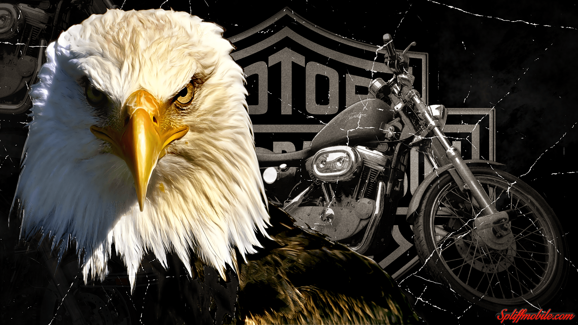 Harley davidson wallpapers wallpaper cave hd harley davidson wallpaper voltagebd Images