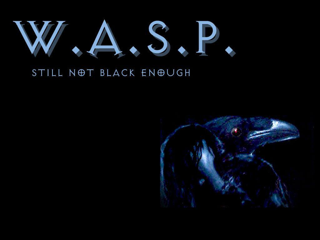 W.A.S.P wallpaper, picture, photo, image