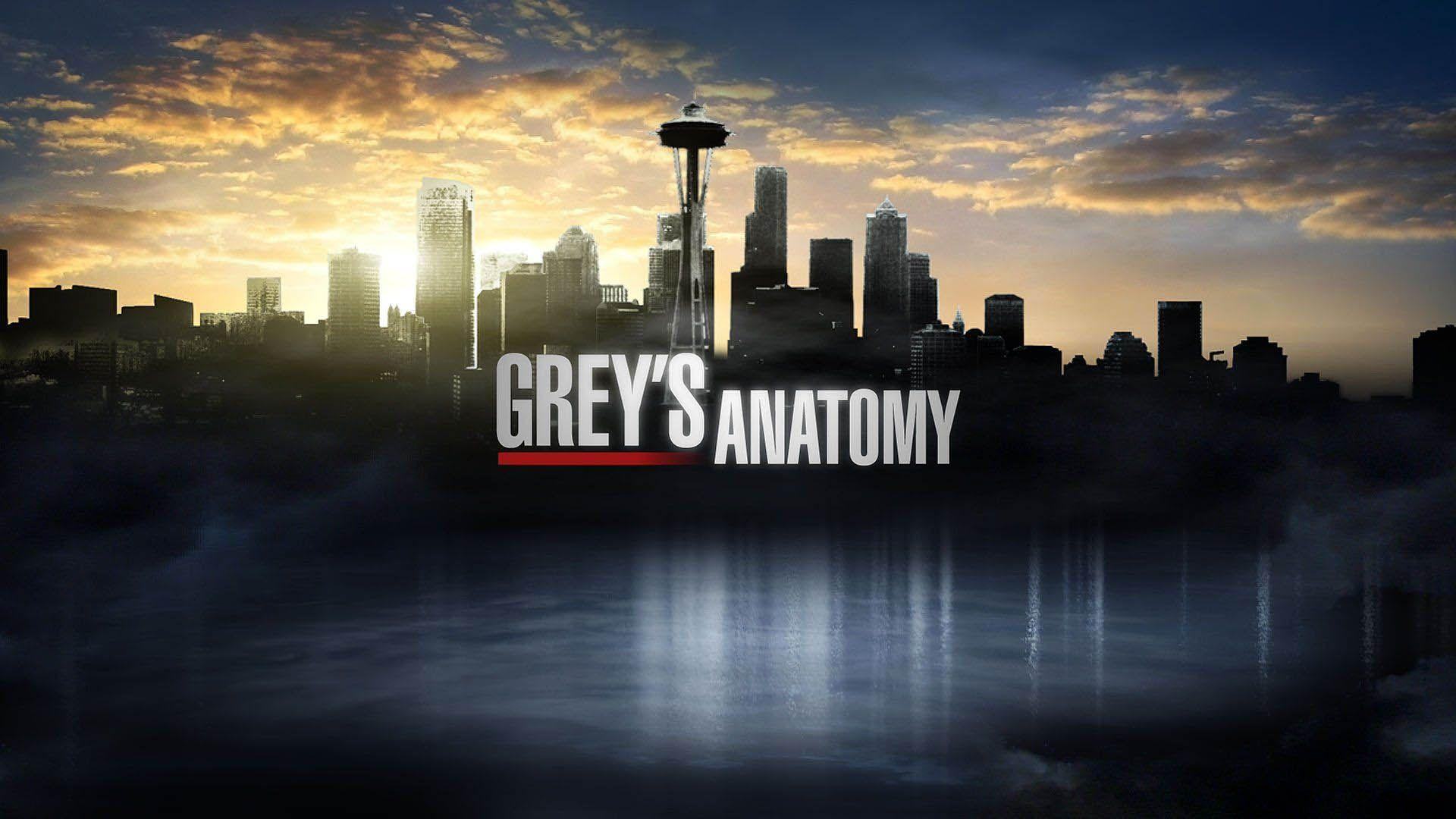 greys anatomy bsto