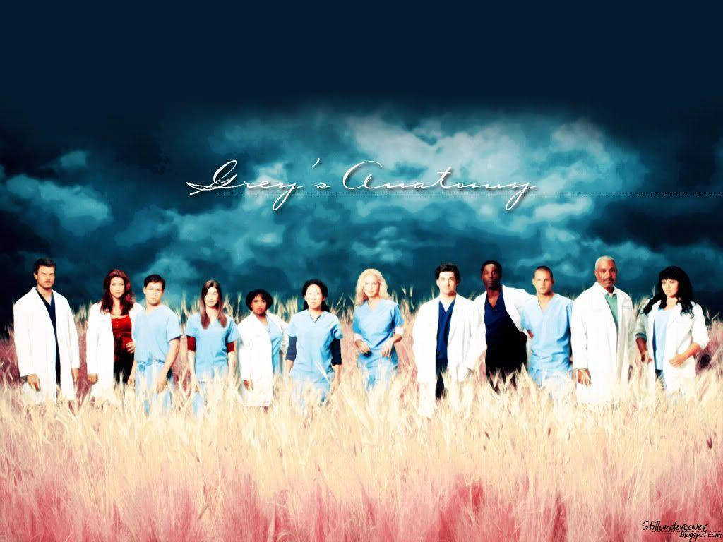 Grey's Anatomy Promo Picture Wallpaper | TV Fanart, Wallpapers & Icons