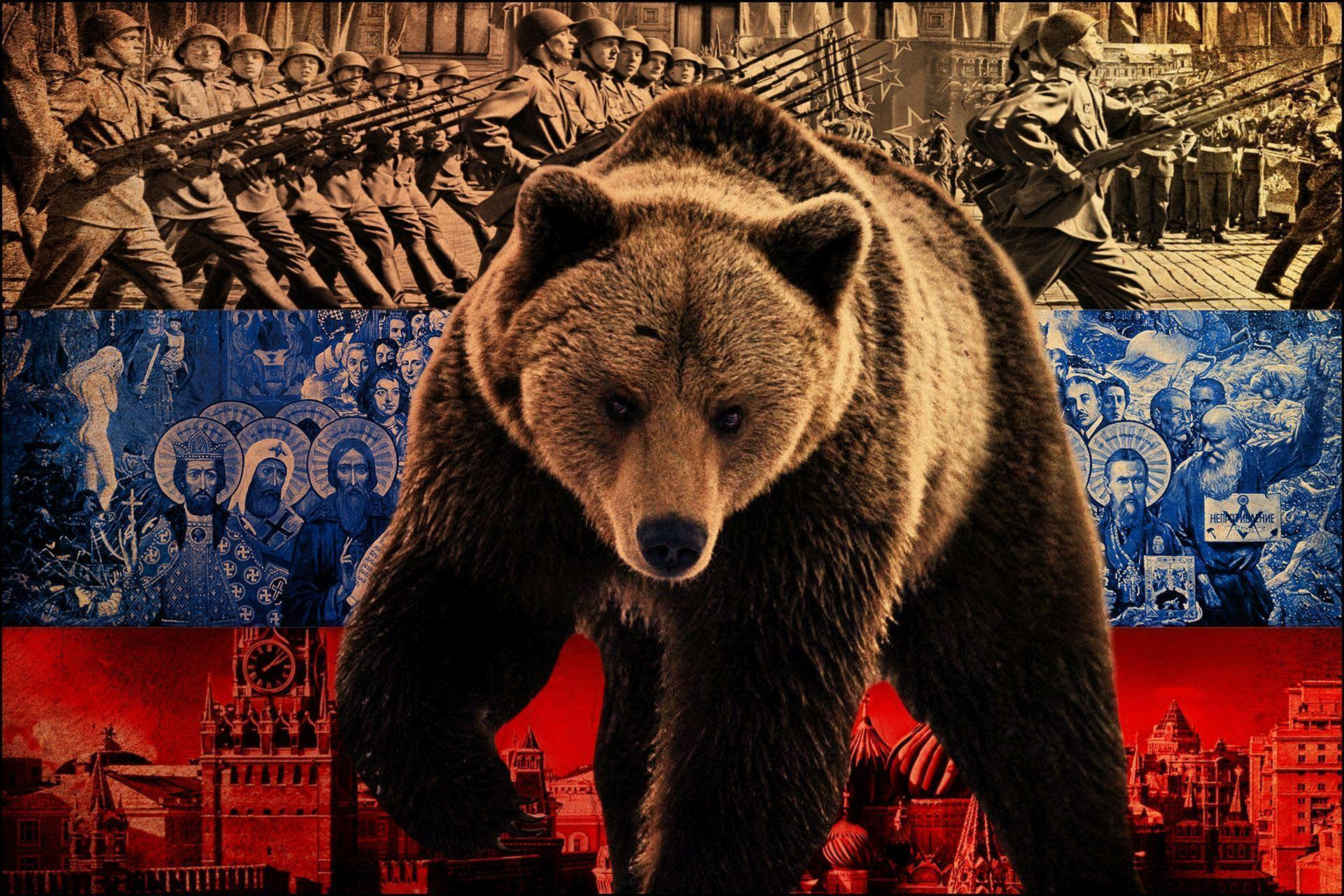 Wallpaper Bear, Symbol, Flag, Russia HD, Picture, Image