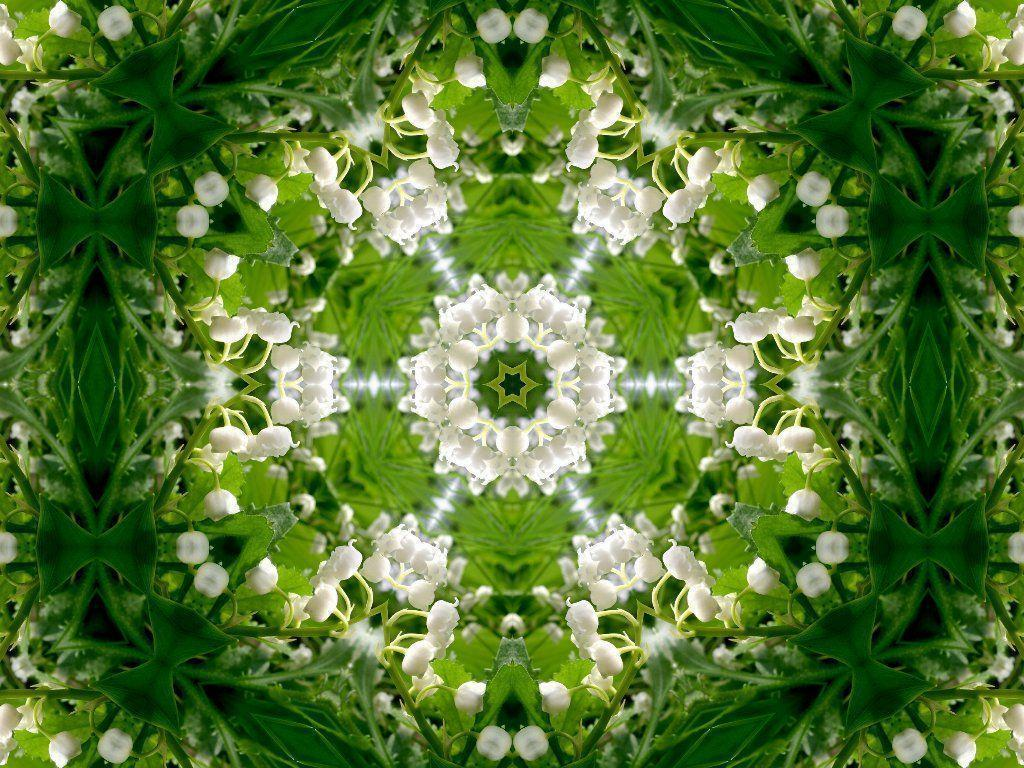 Mandala Computer Wallpaper, Awesome Mandala Pictures and ...