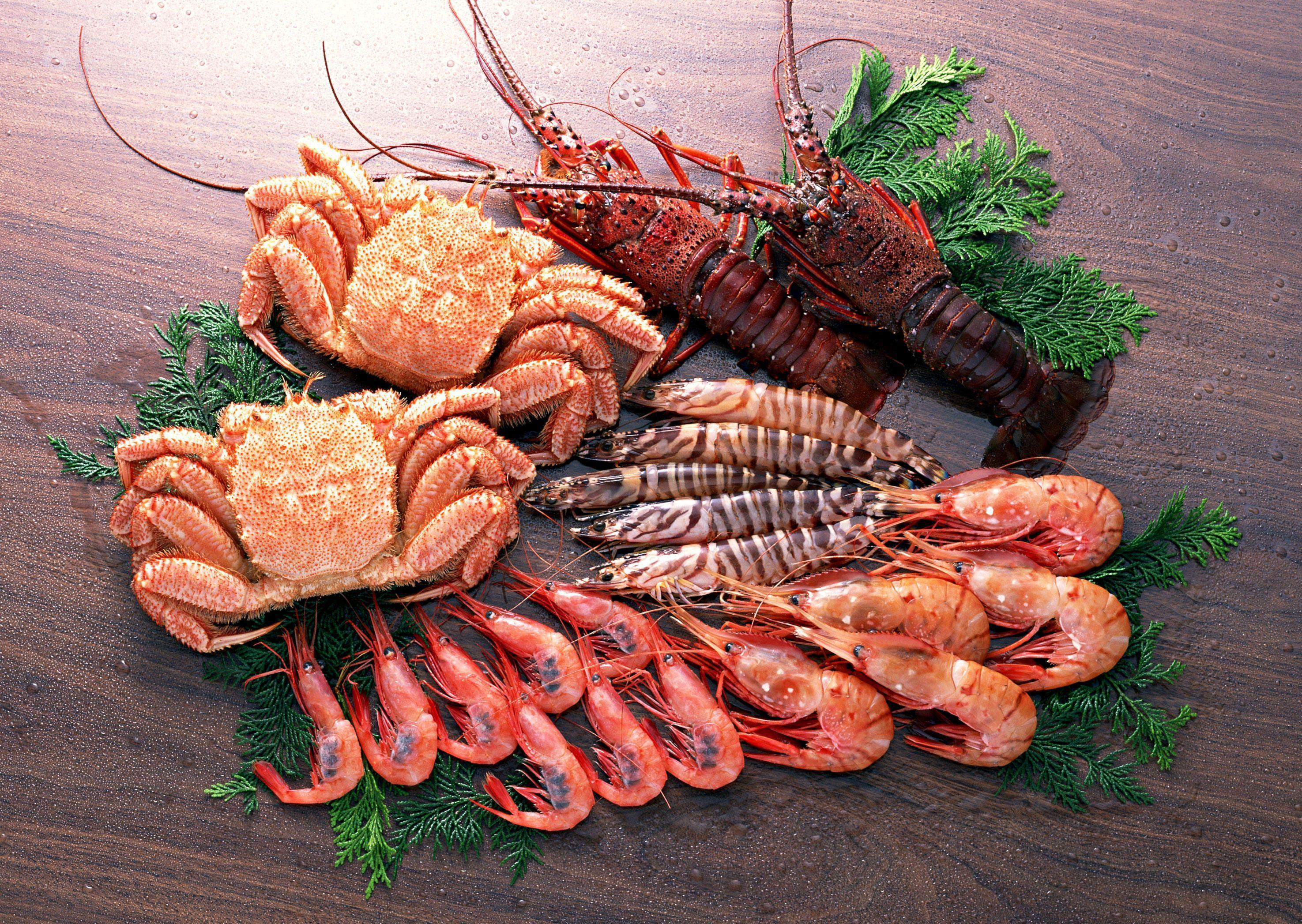 HD Seafood Wallpapers, Live Seafood Wallpapers (ERB51+ WP)