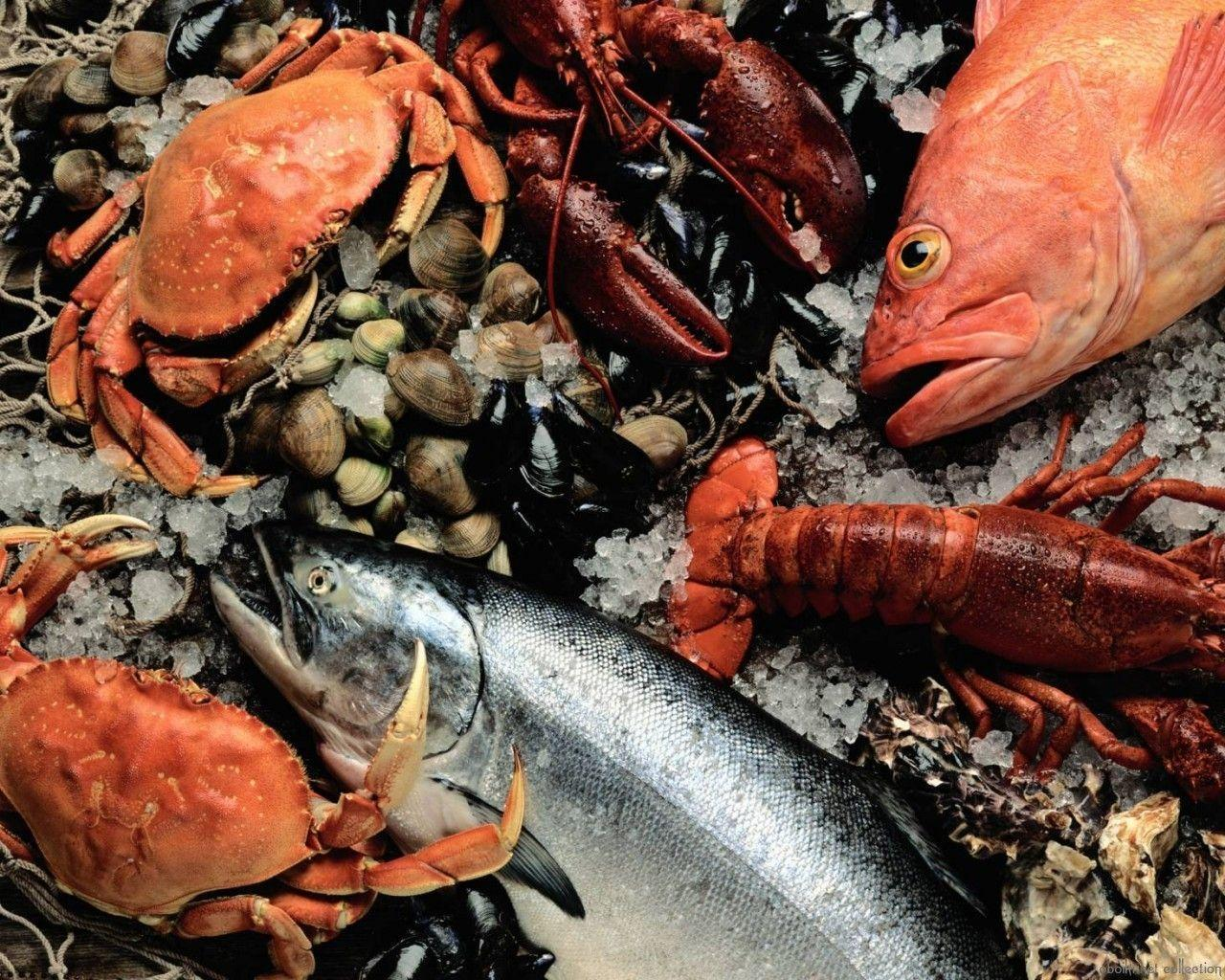 Wallpaper Seafood, Fresh, Fish, Crab, Lobster, Mussels HD, Picture ...