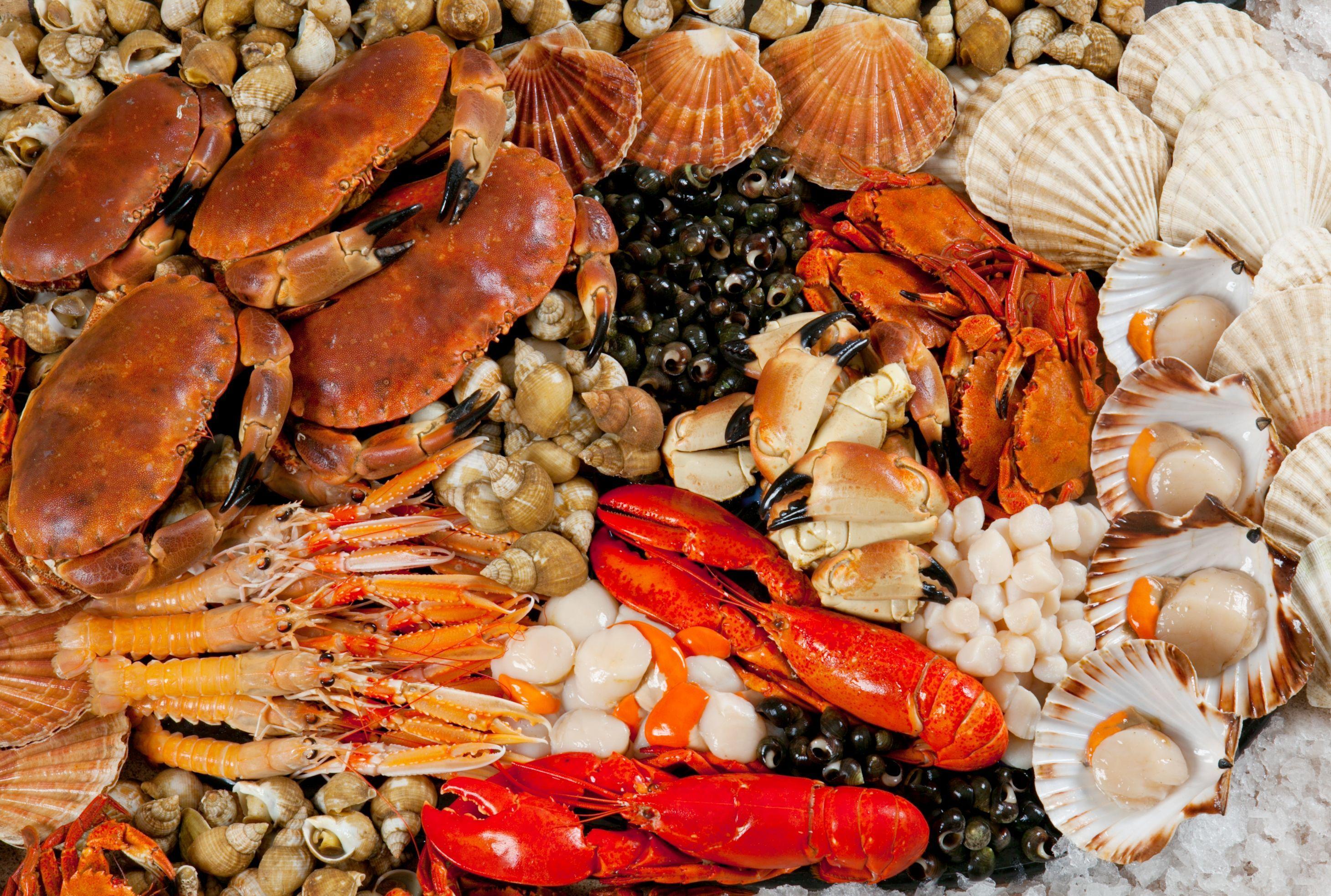 6048x4032px Seafood 11767.4 KB #323519
