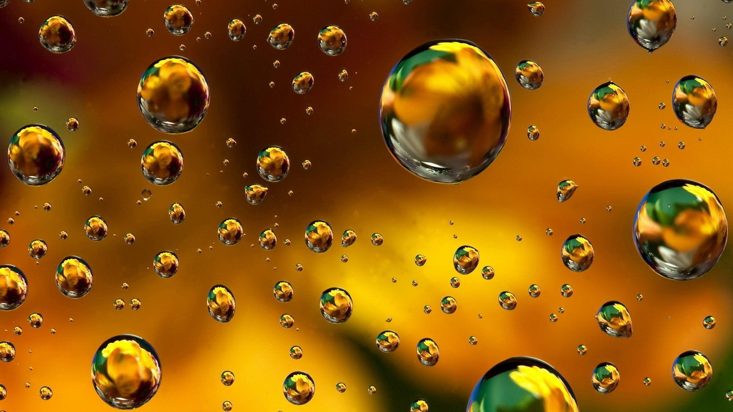 bubbles desktop 1024x768 - photo #31