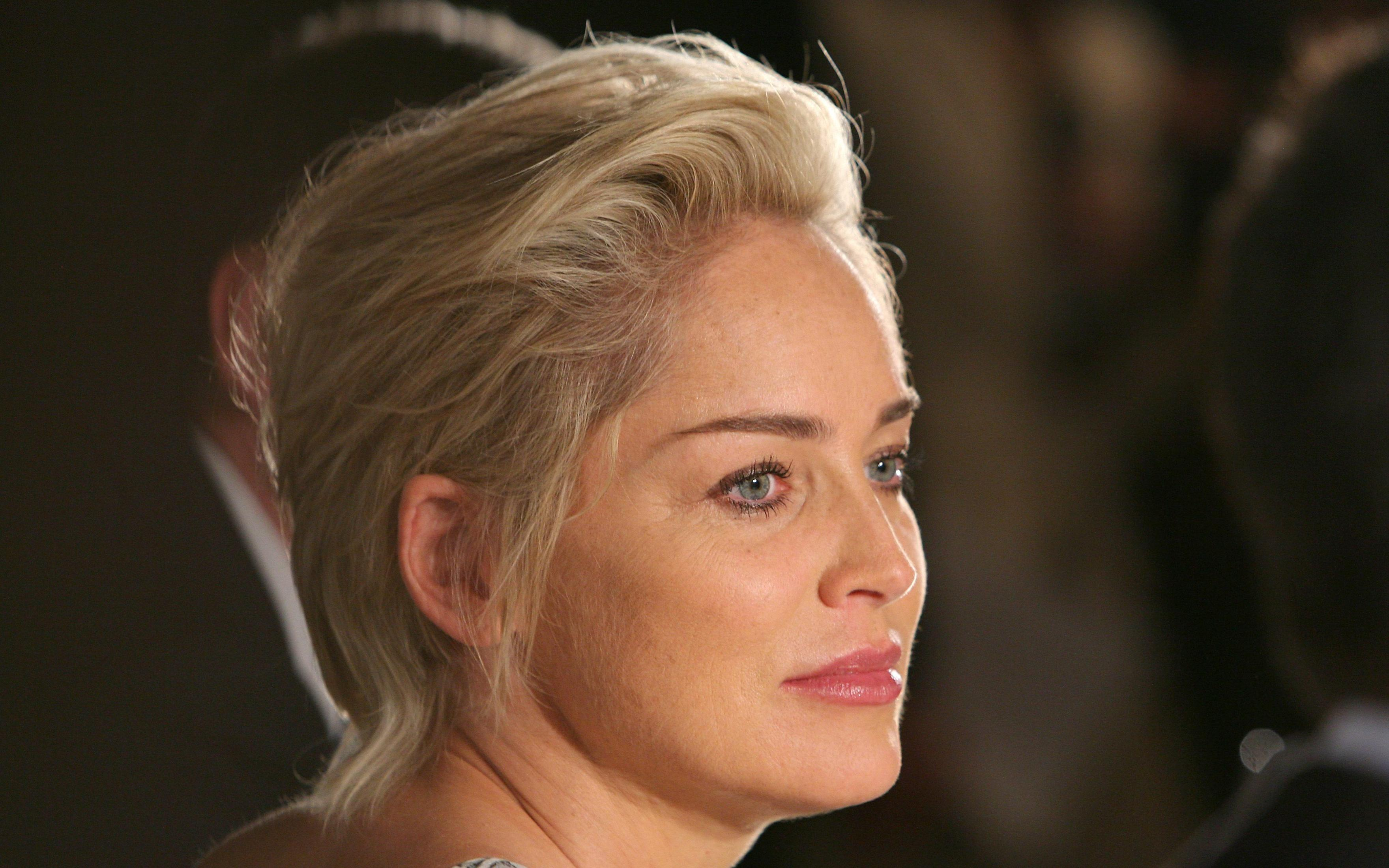 Sharon Stone Wallpapers HD Download