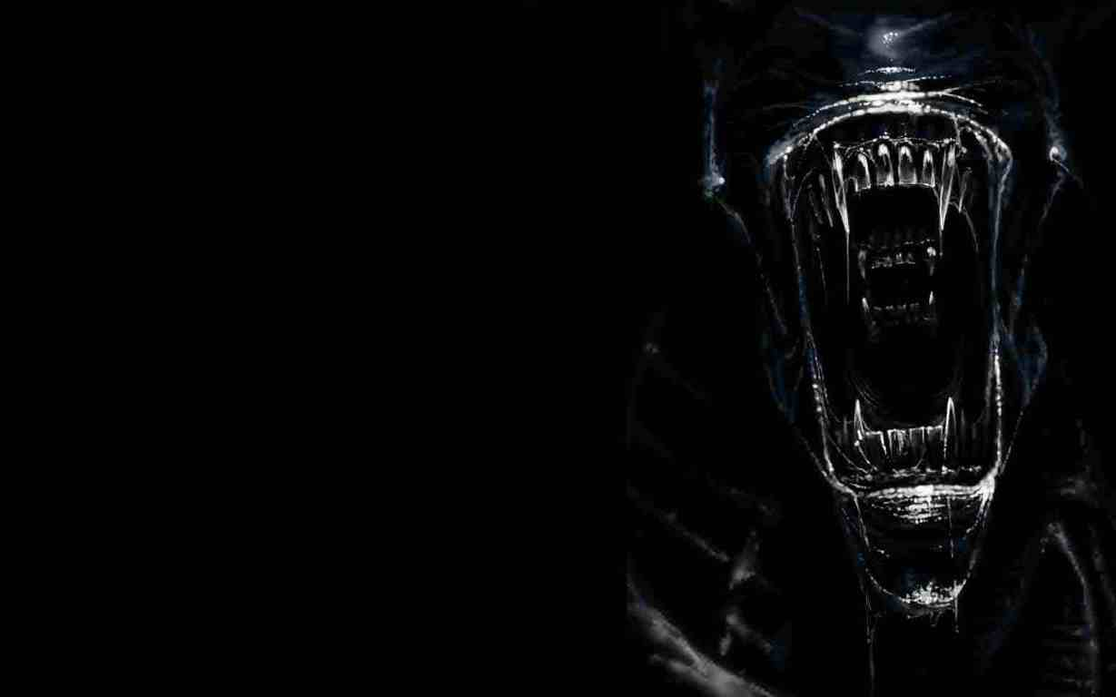 Xenomorph Wallpapers Wallpaper Cave