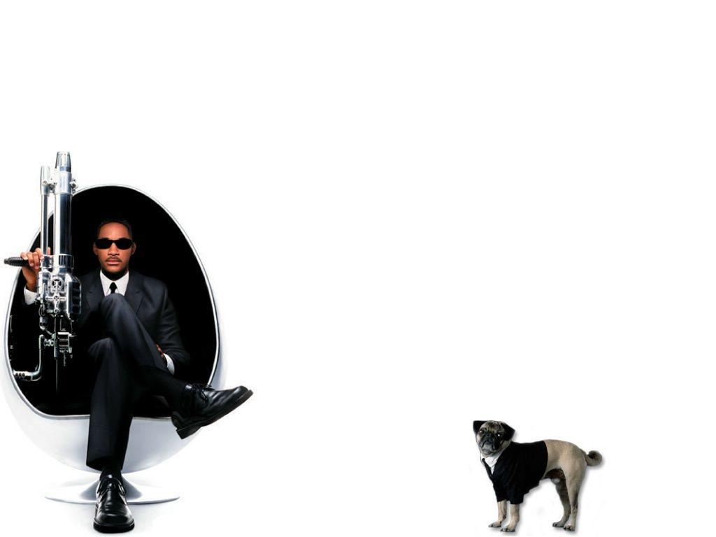 Download Wallpapers white dog actor will smith men in black 2 ii