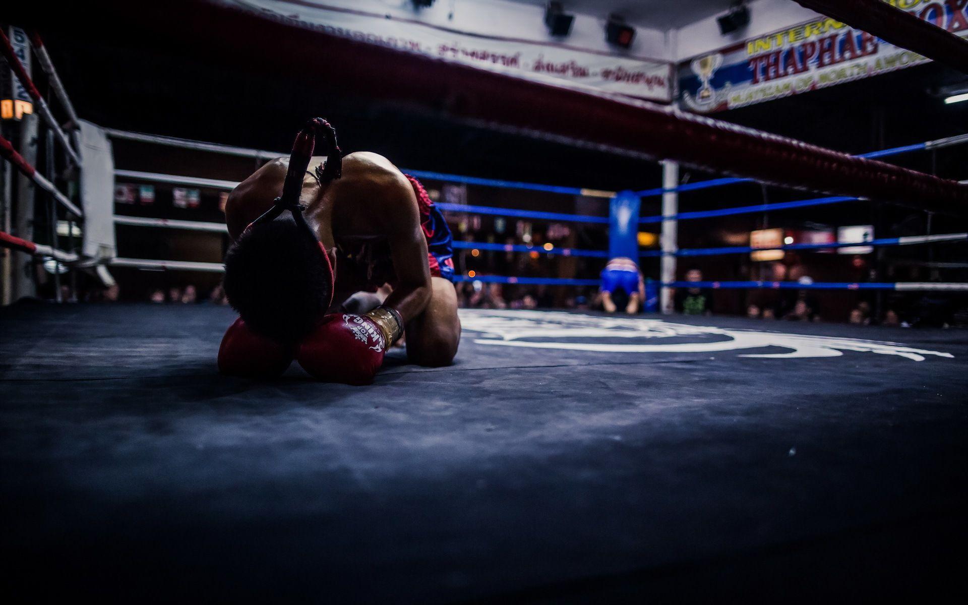 kick boxing wallpapers wallpaper cave