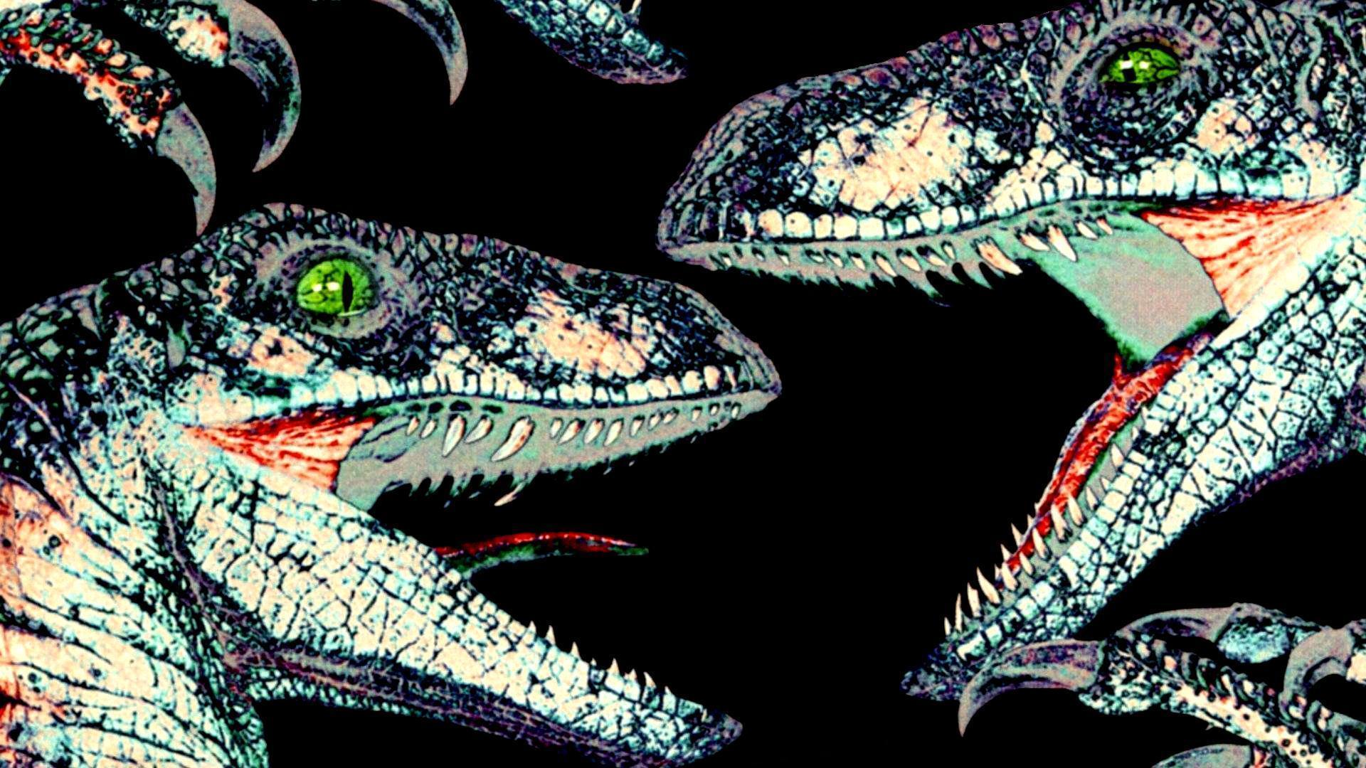 velociraptor wallpapers wallpaper cave
