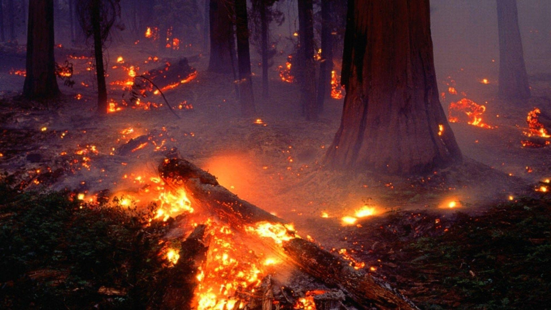 fire apocalypse background - photo #7