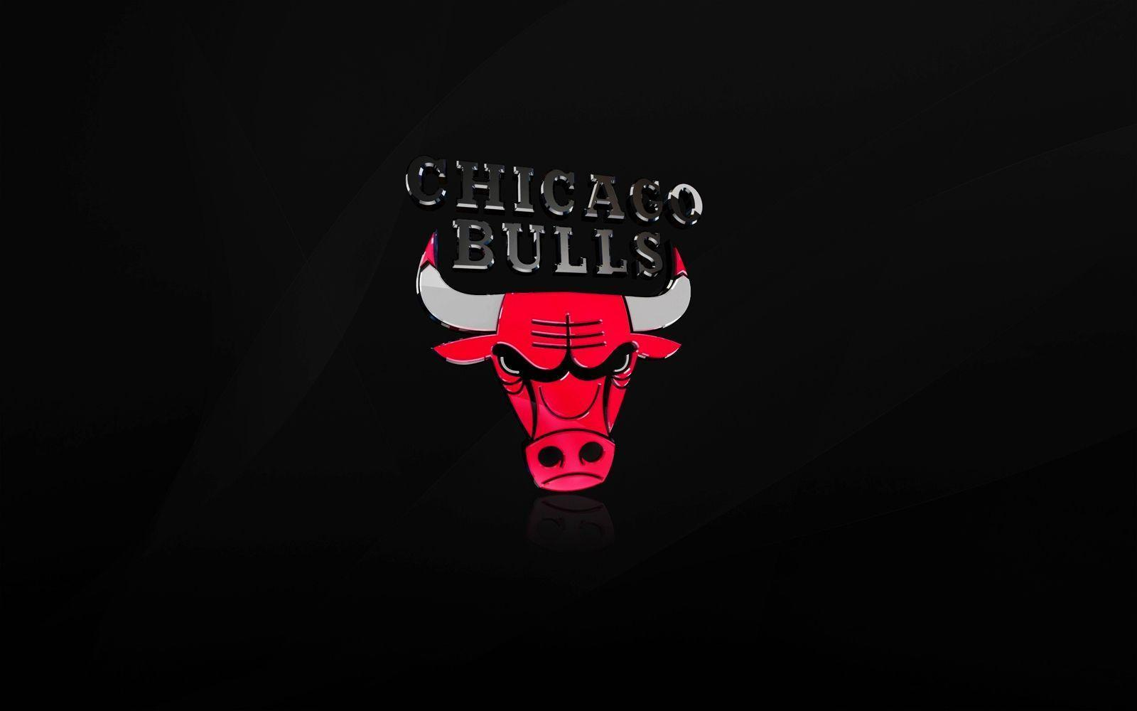 Chicago Bulls NBA Logo Art #7030473