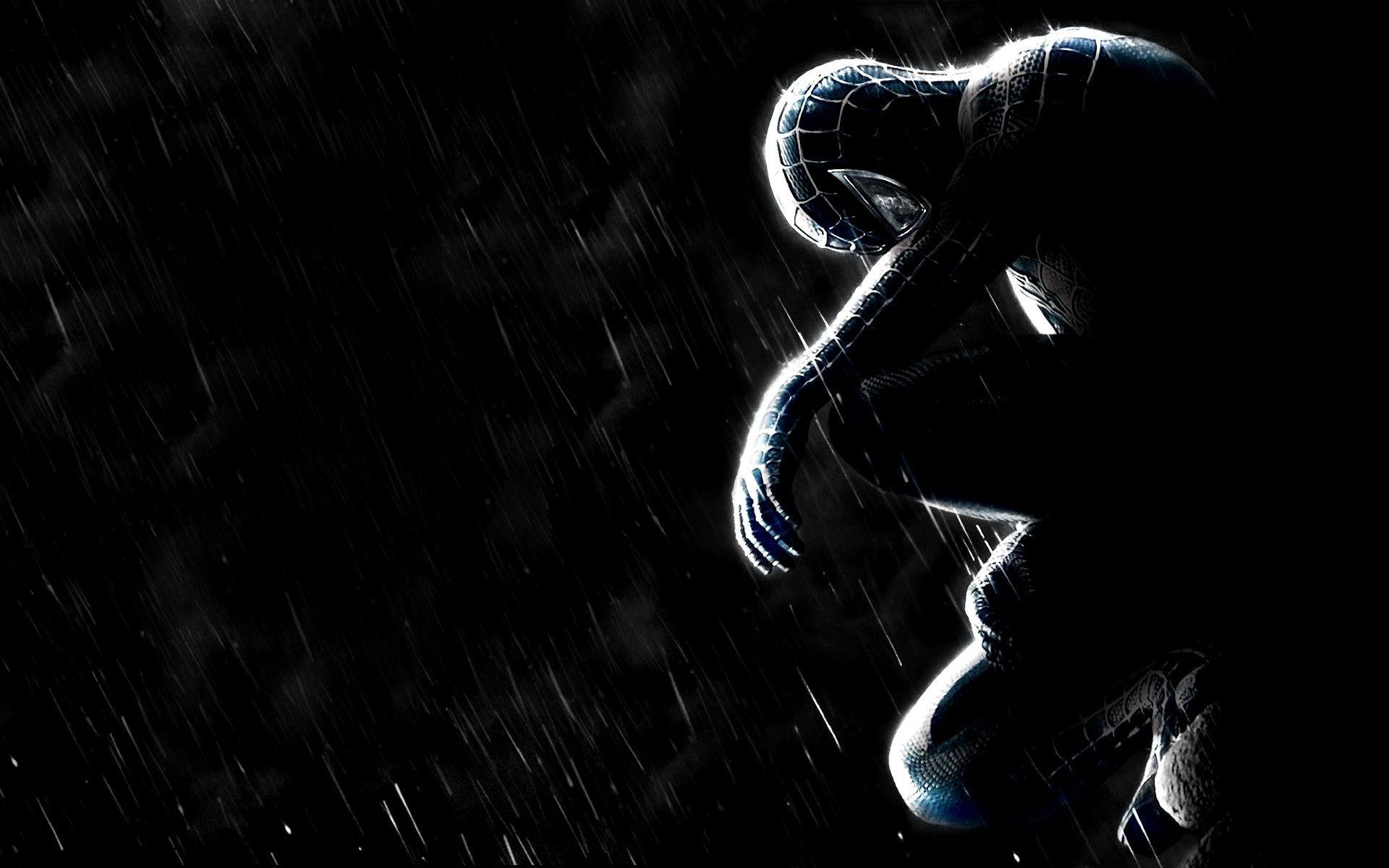 Black Spider Man Wallpapers Wallpaper Cave