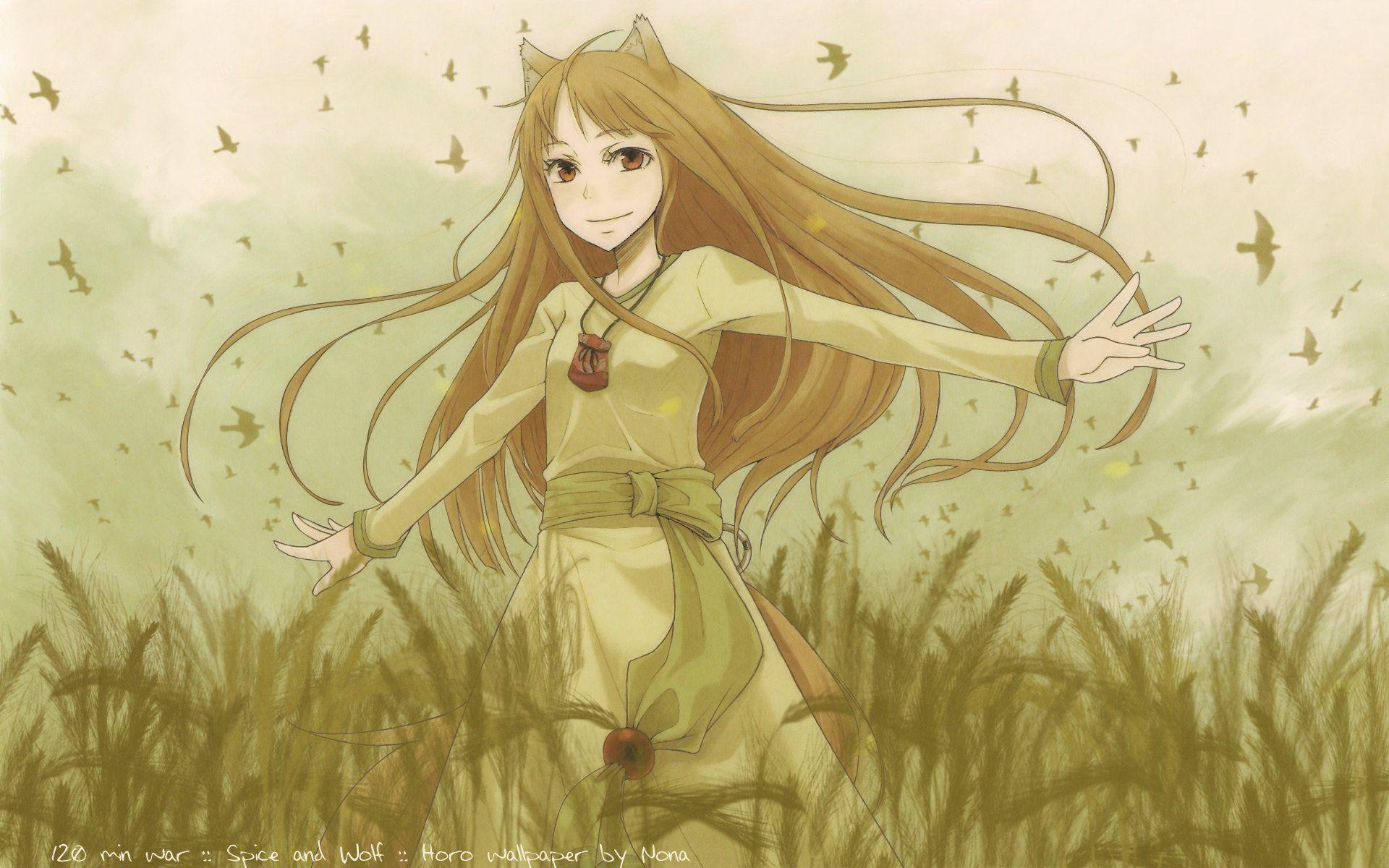 Spice And Wolf Wallpapers Wallpaper Cave