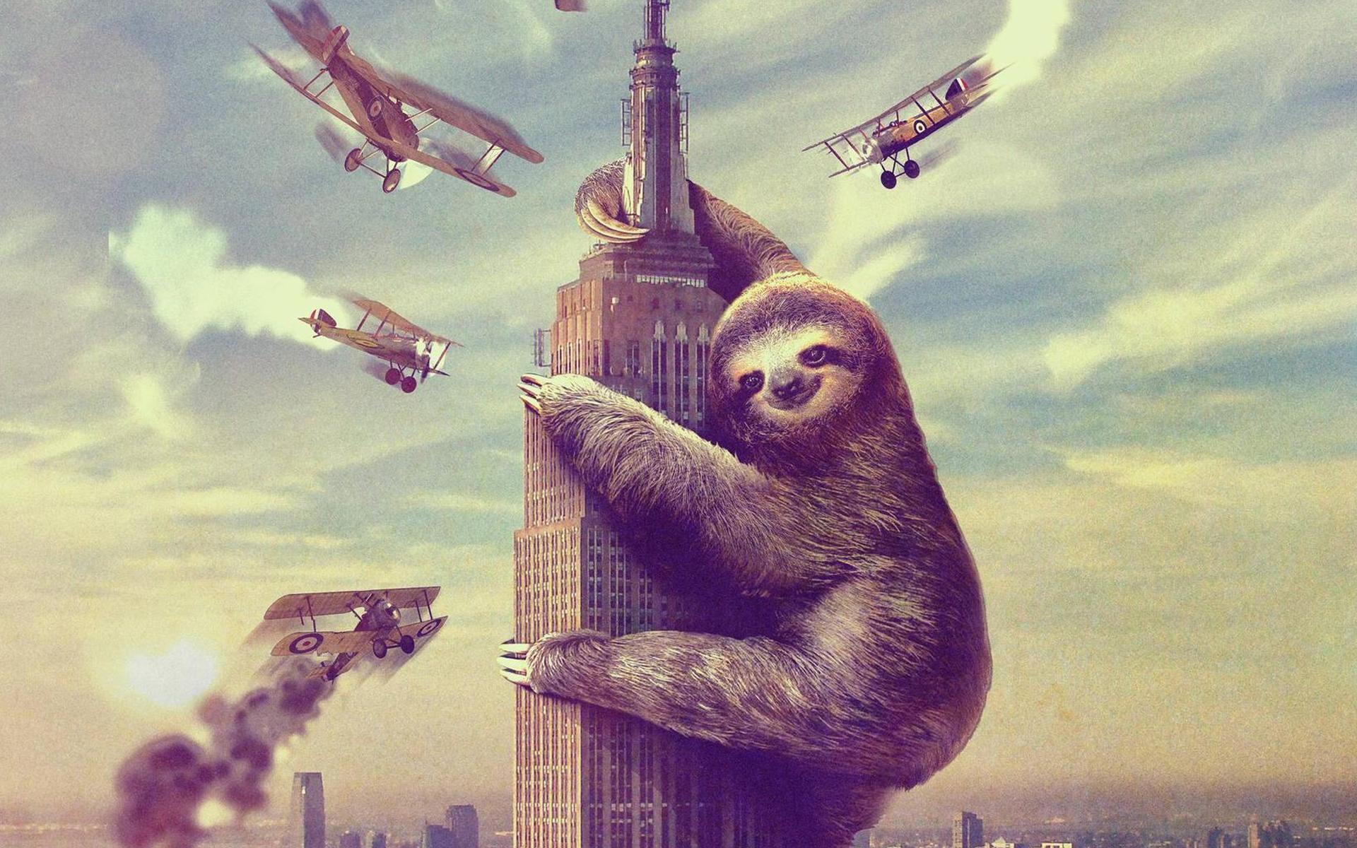 Image - Giant Sloth Wallpaper.jpg | Boom Beach Wiki | Fandom .