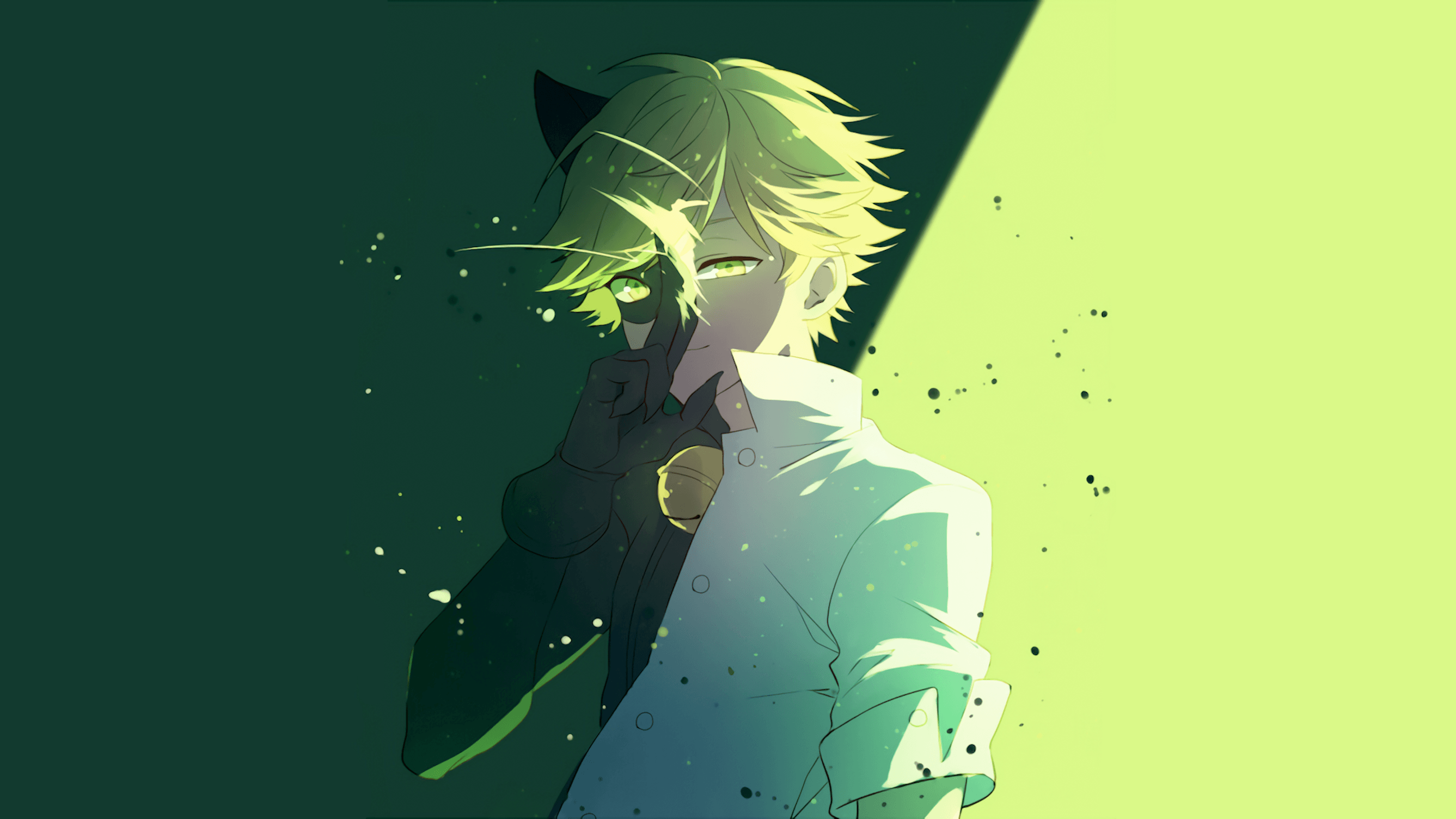 Chat Noir Wallpapers Wallpaper Cave