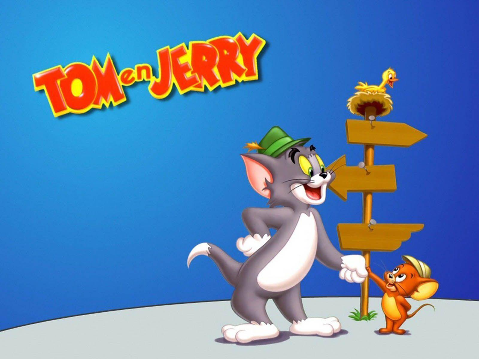 Wallpaper's Collection: «Tom and Jerry Wallpapers»
