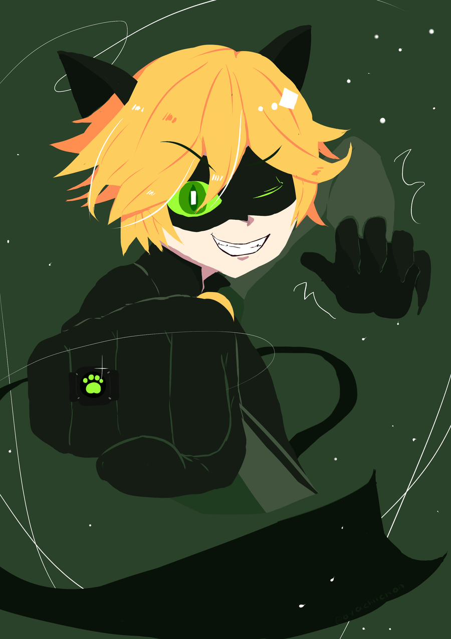 Cat Noir 2d Pictures to Pin