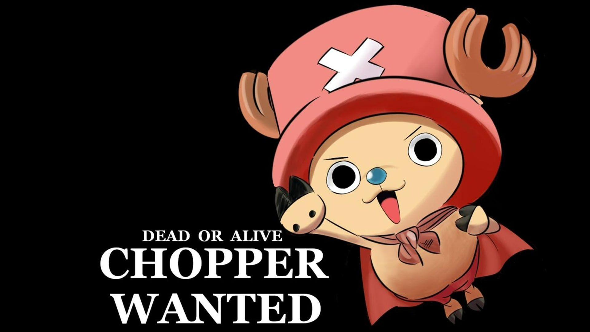 Cute Fly Tony Chopper Wallpapers Wallpapers Themes