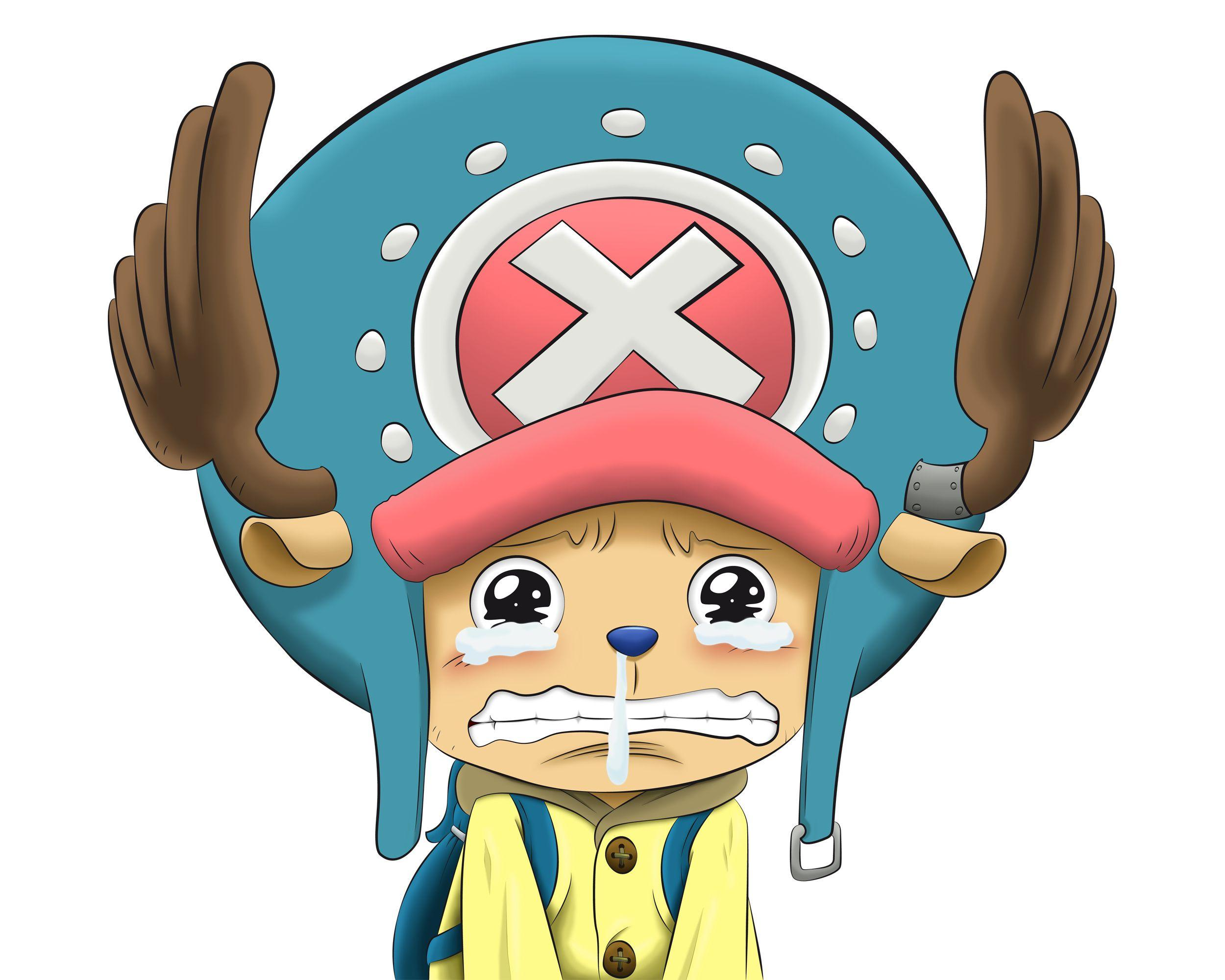 Wallpaper Pemandangan Wallpaper One Piece Lucu