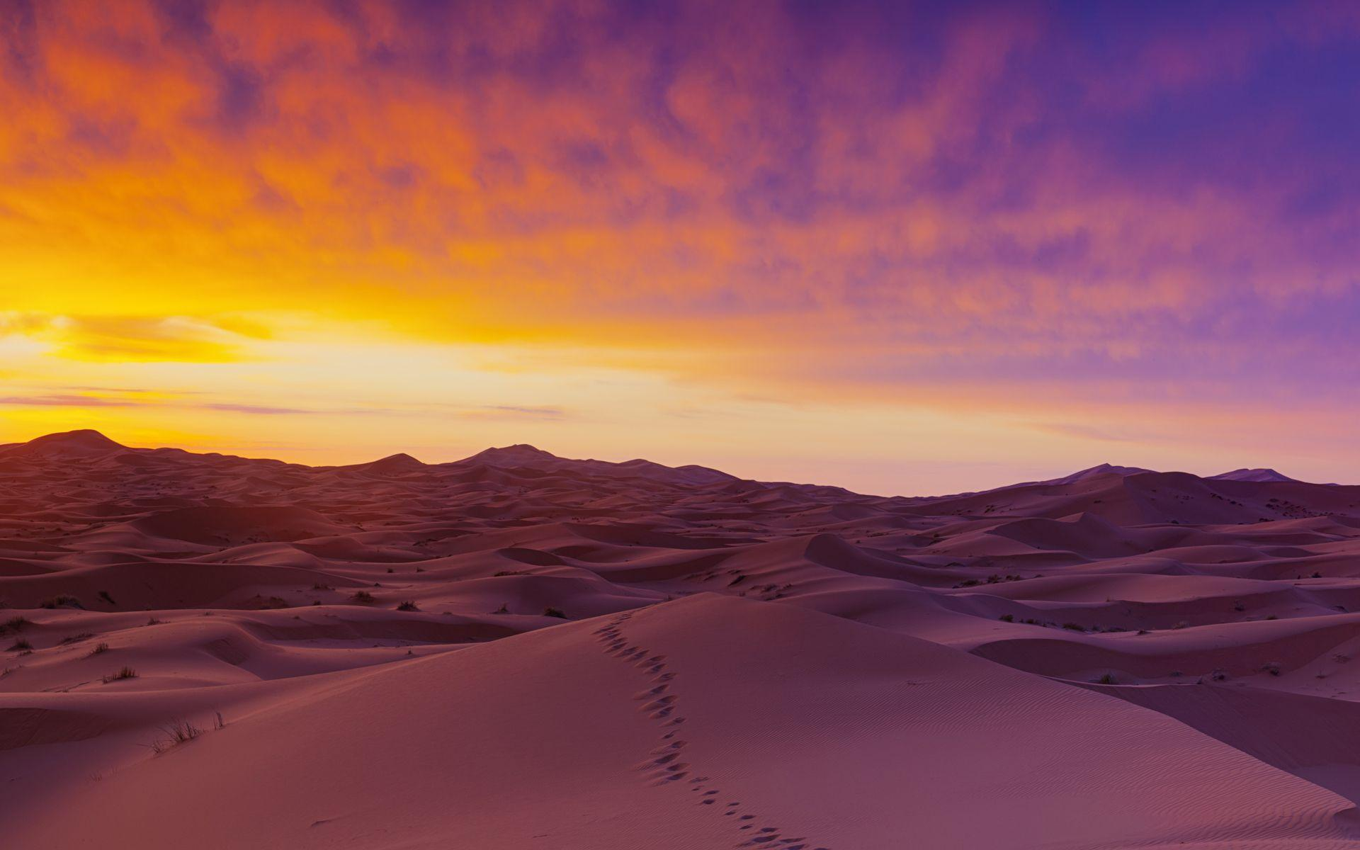Download Sahara Desert Sand Wallpapers Free By udhao