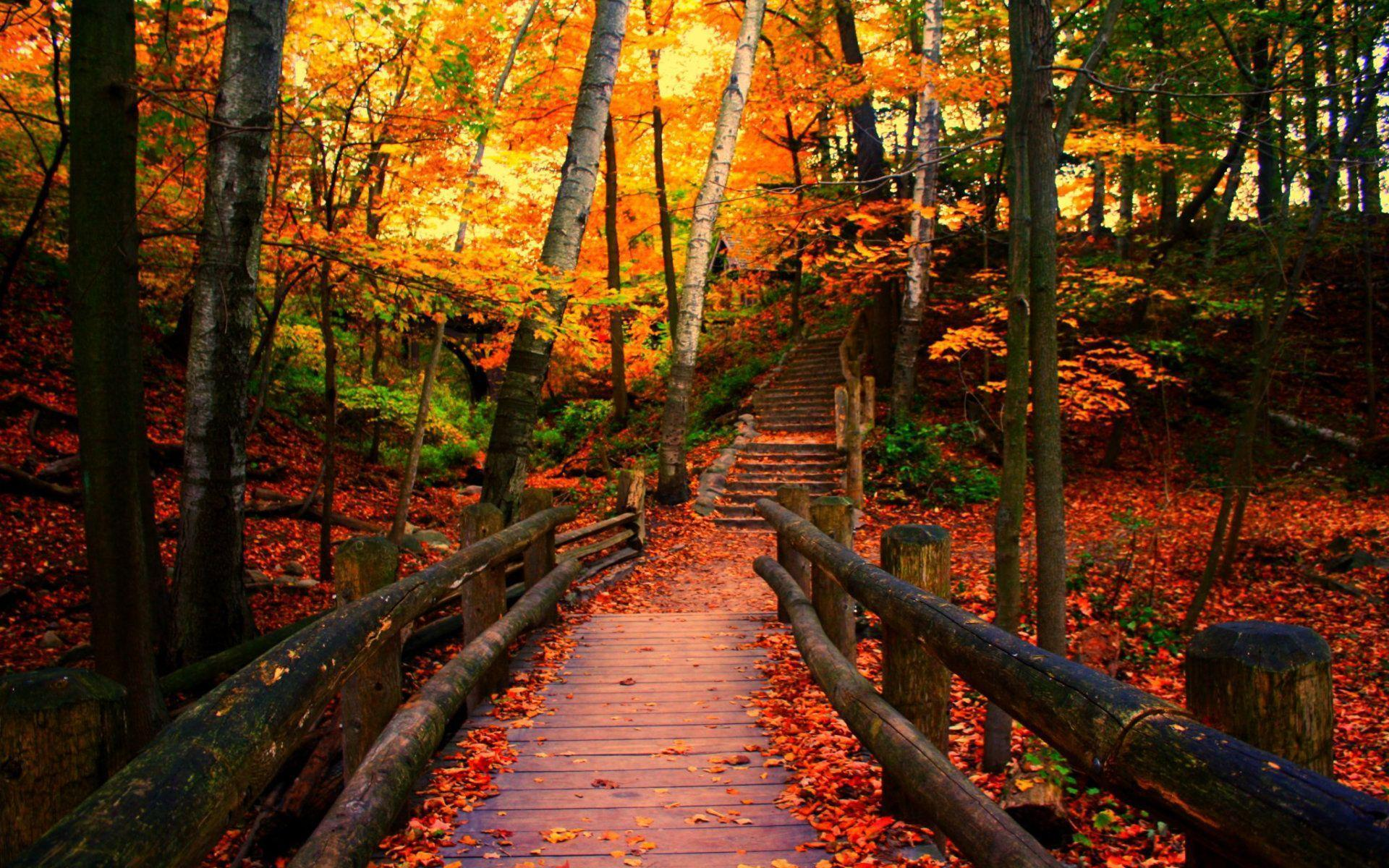 Wisconsin Autumn Wallpapers