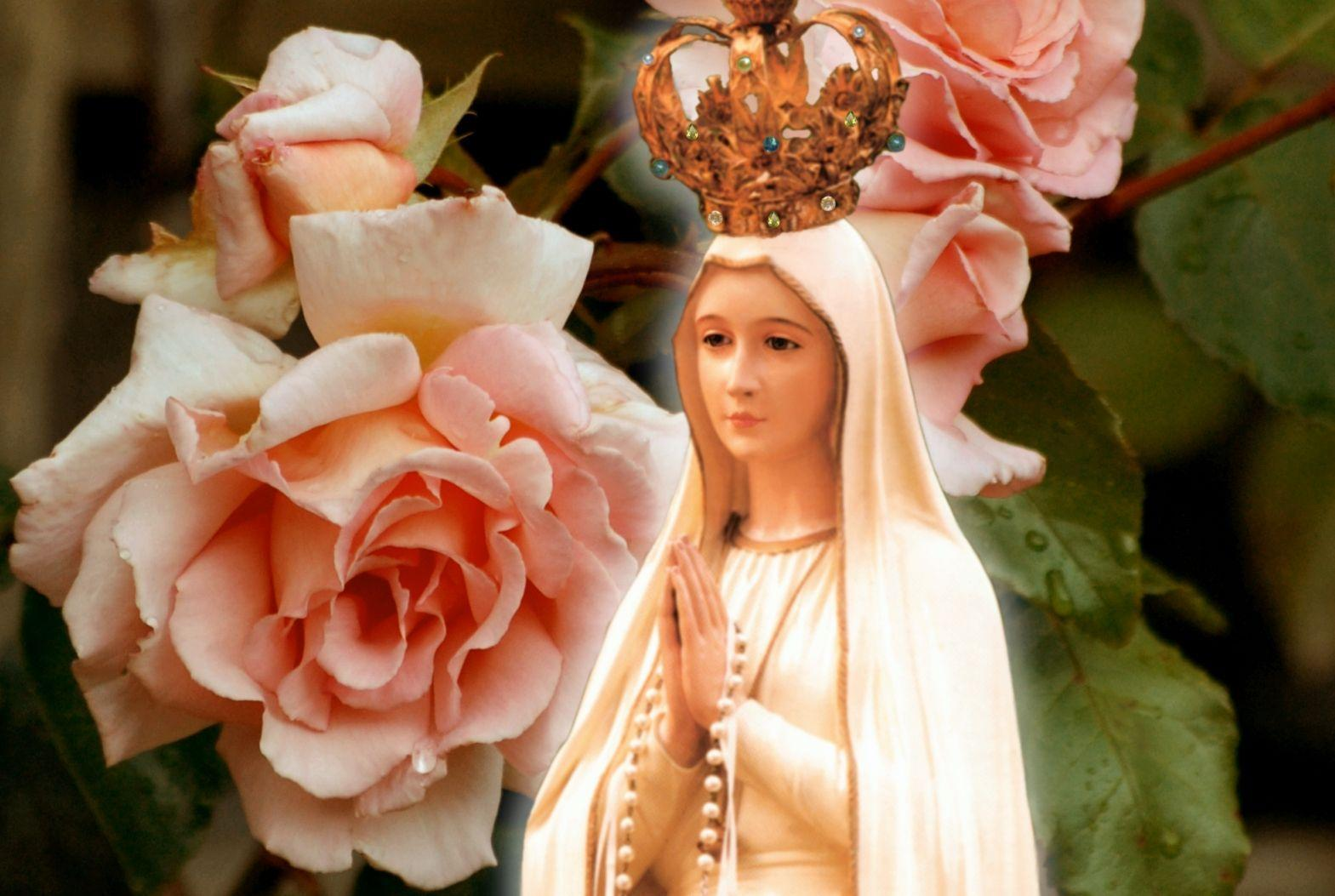 Our Lady Of Fatima Desktop Wallpapers Wallpaper Cave