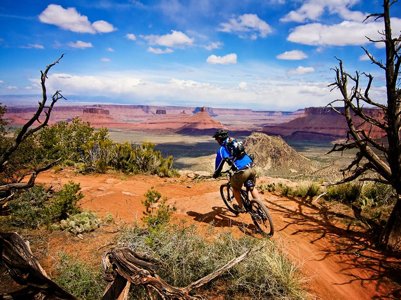 Mountain Bikes Wallpapers Wallpaper Cave